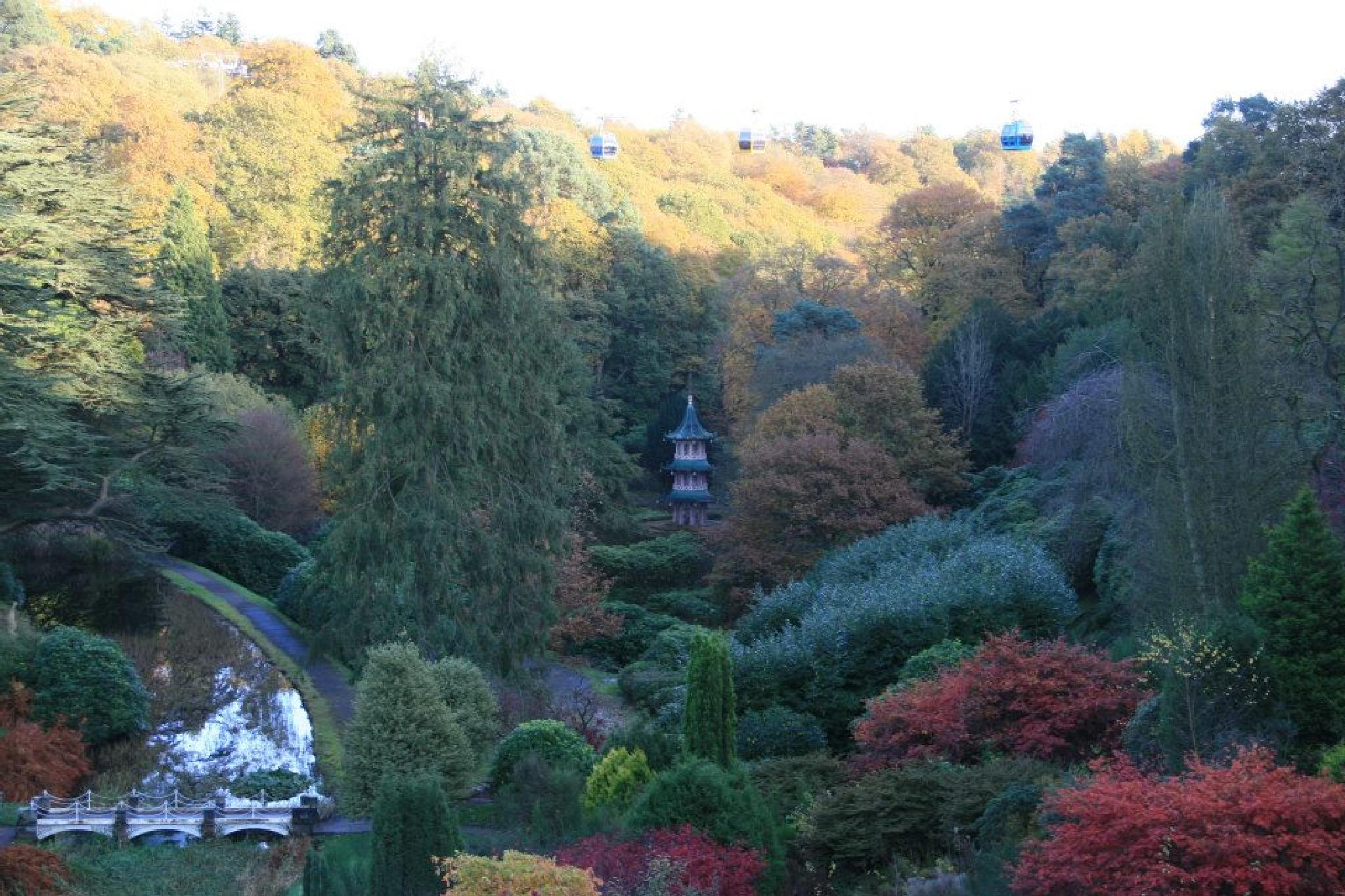 Pagoda in the Gardens by Suzanne Hyde