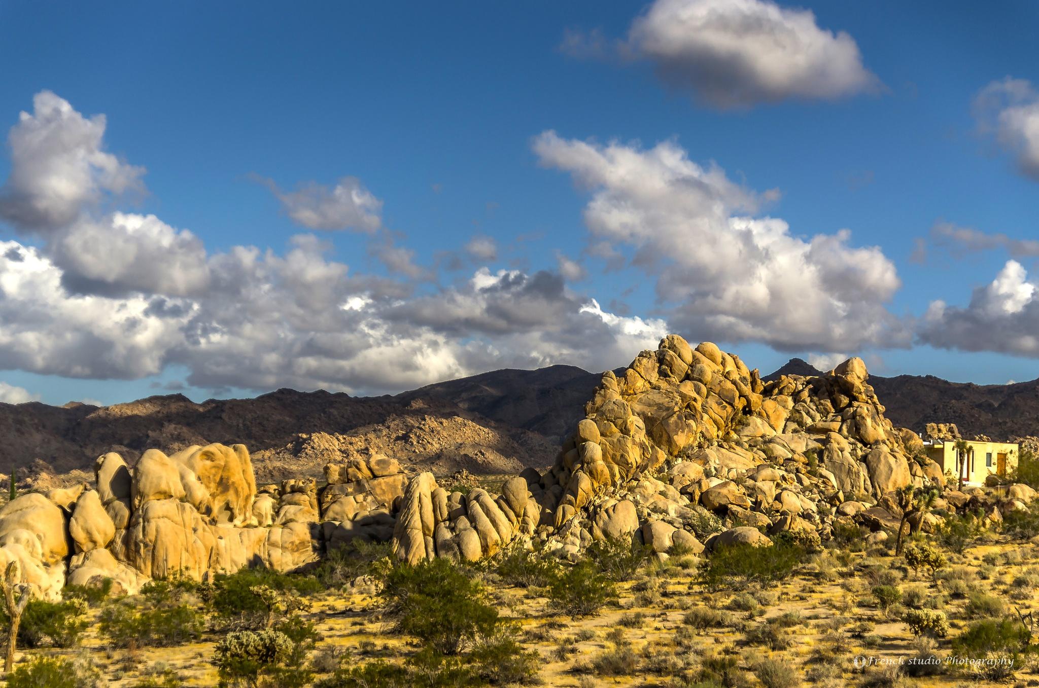Photo in Random #rocks #desert #park #california