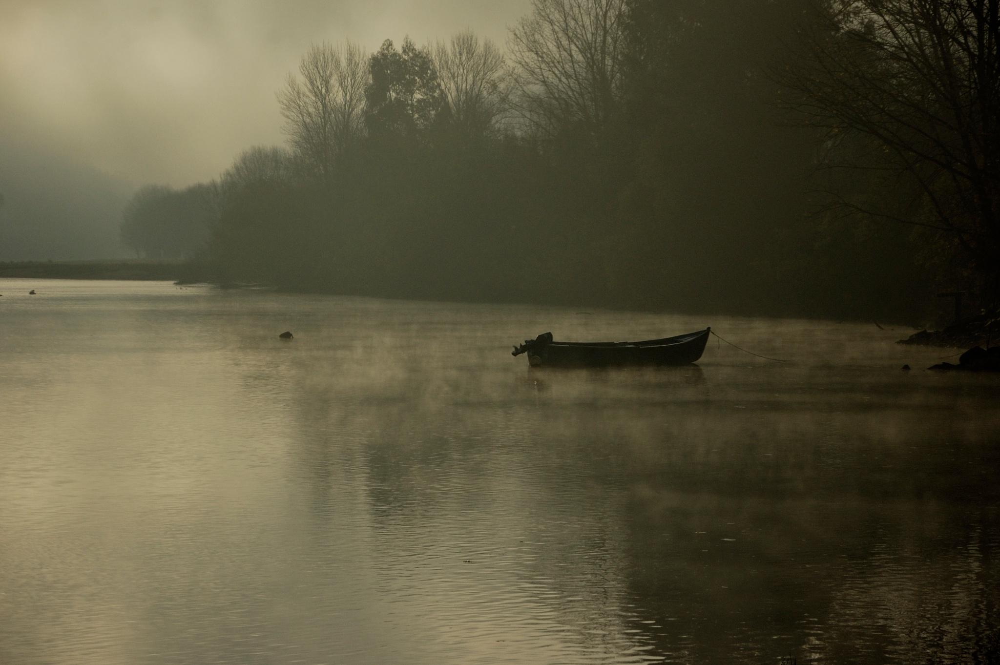 Misty morning by João Almeida