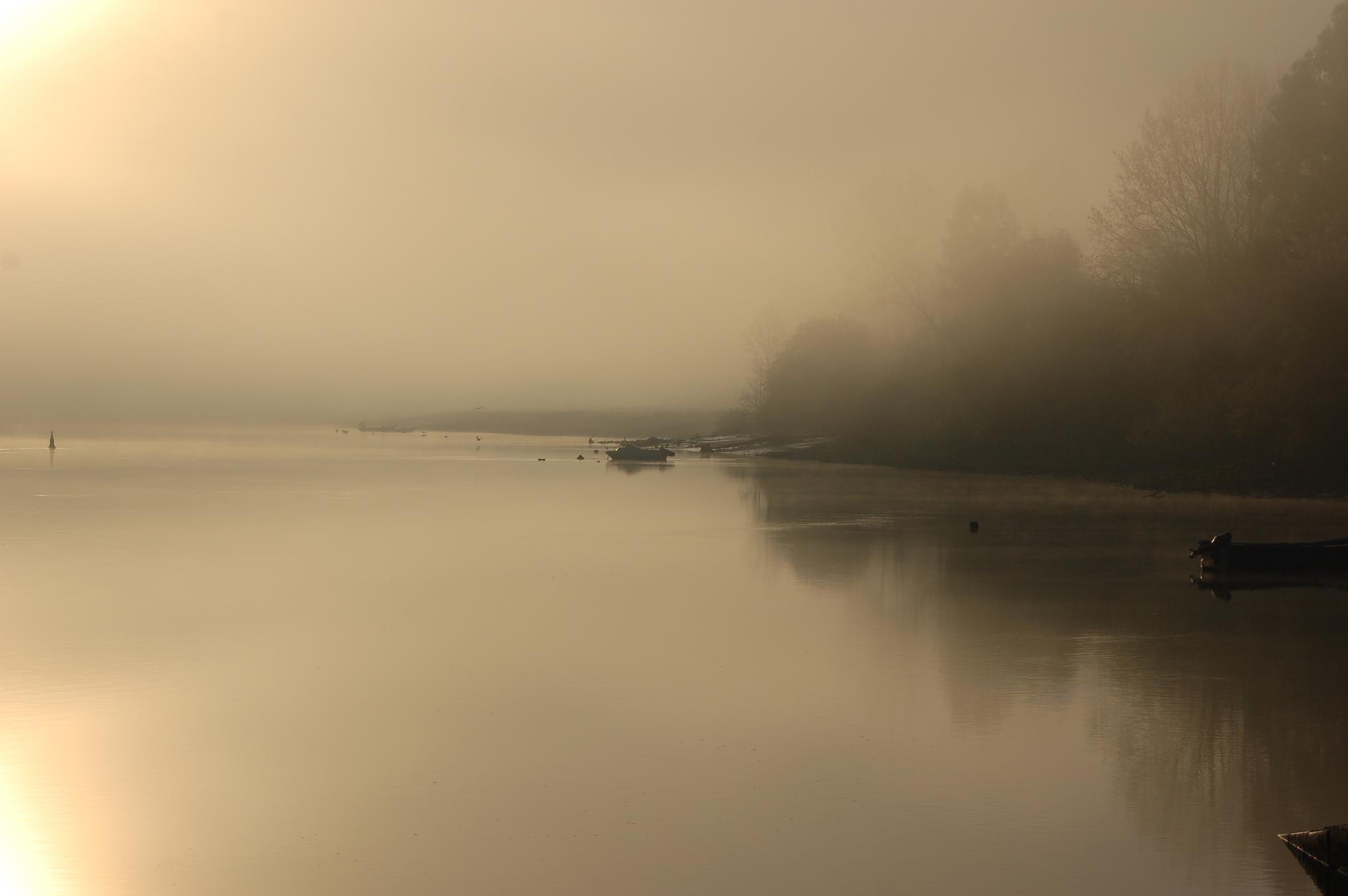 Early morning by João Almeida