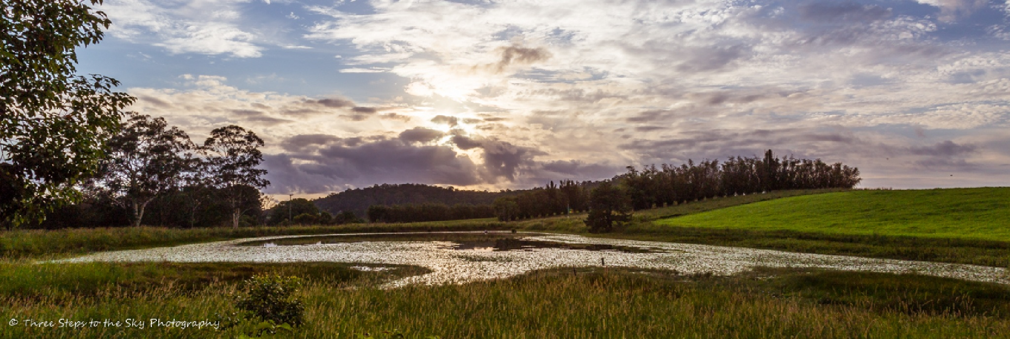 Early Cloud by Sel Kerans