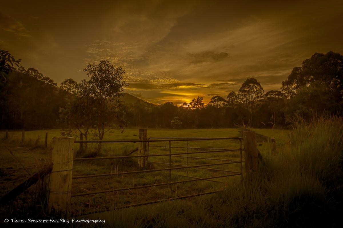 Dawn Dreaming by Sel Kerans