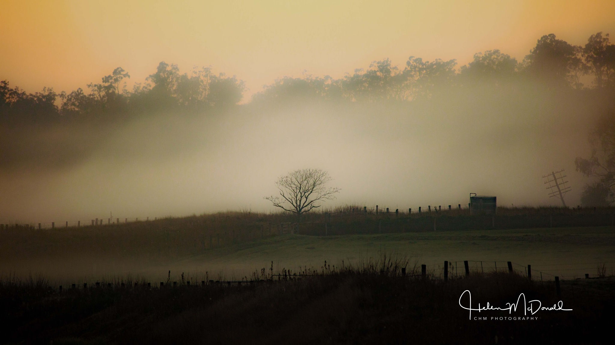 Break of Day - Maryvale,  Queensland by Helen Robinson