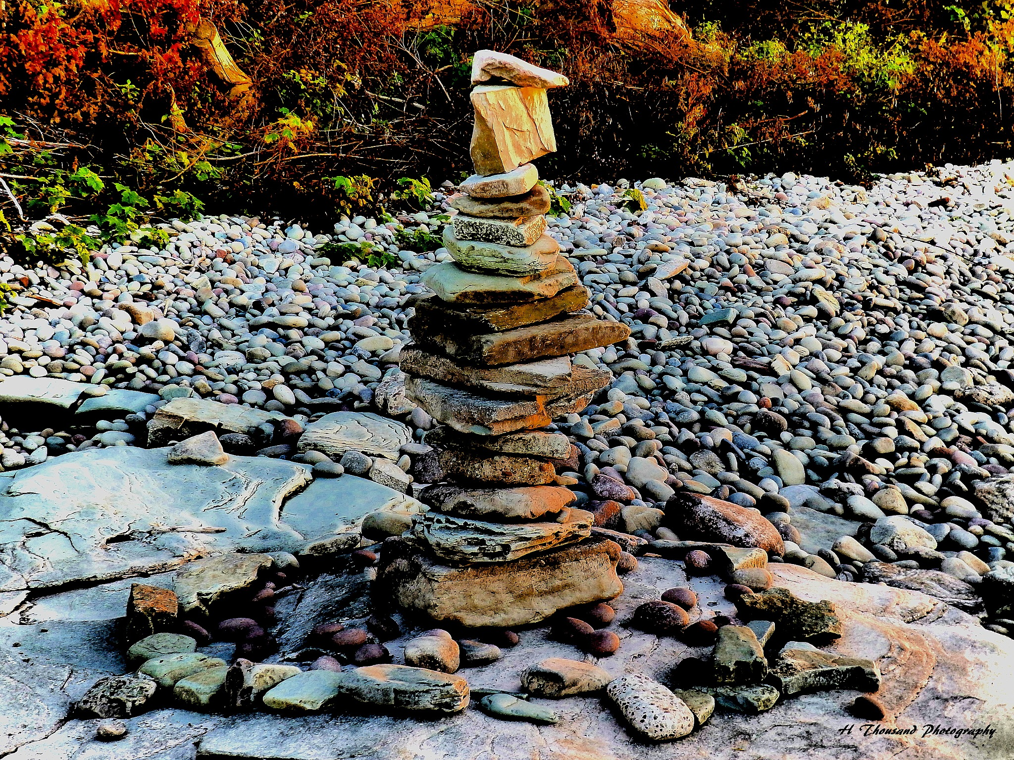 Shoreline Diversity Sculpture by hrthousandjr