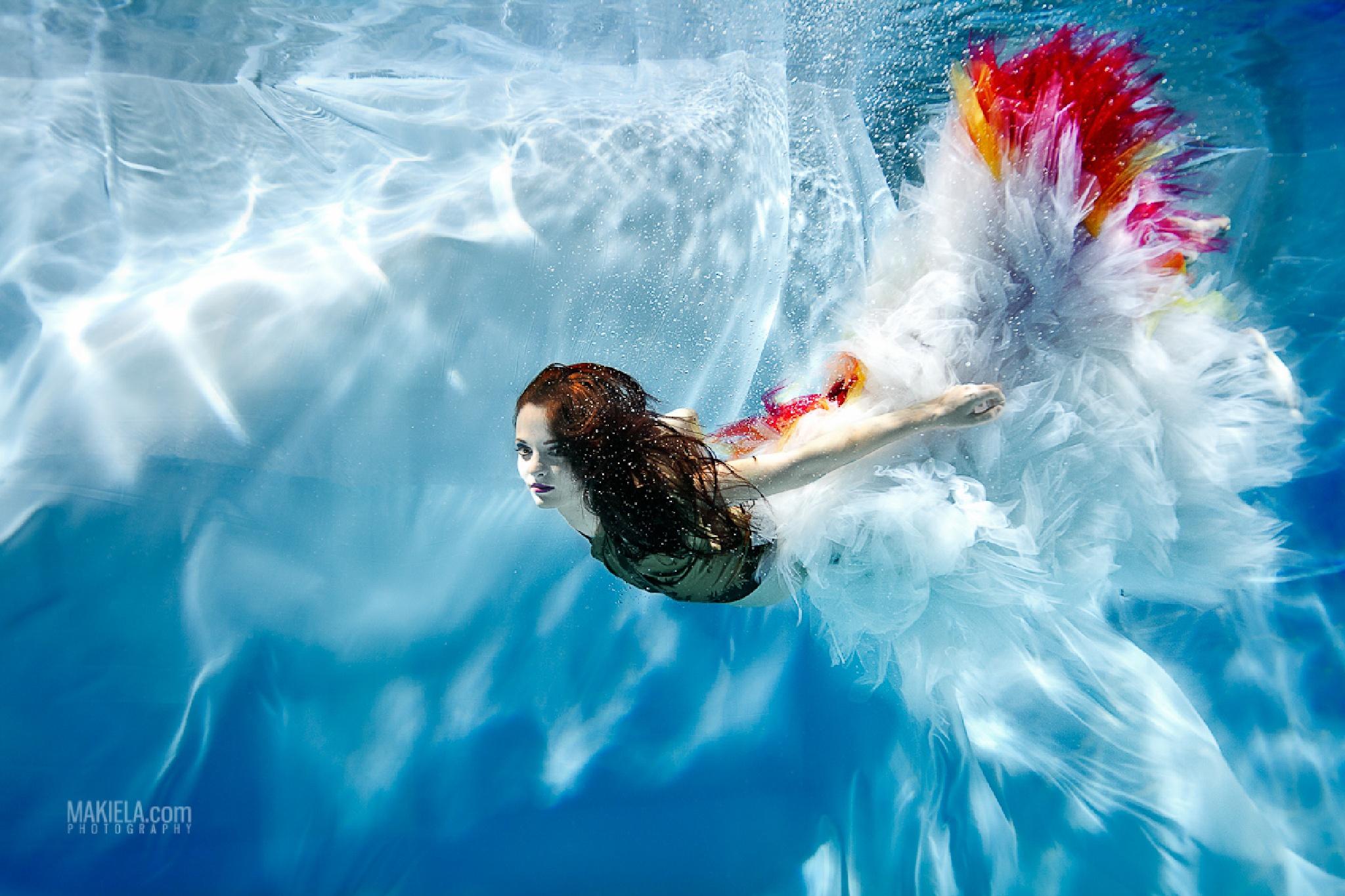 Underwater bird by Makiela Underwater Photography