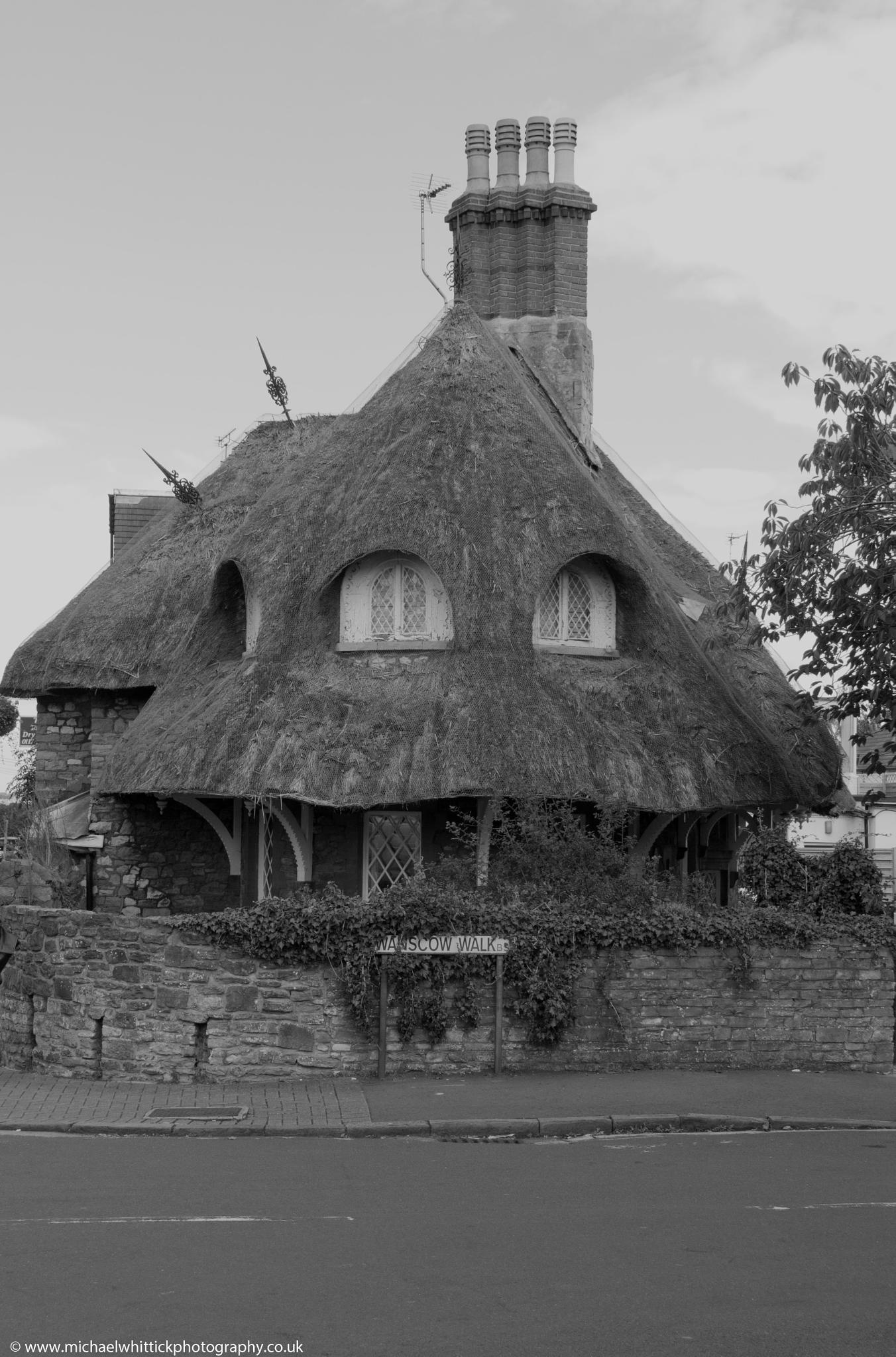 Thatched Cottage by Michael Whittick