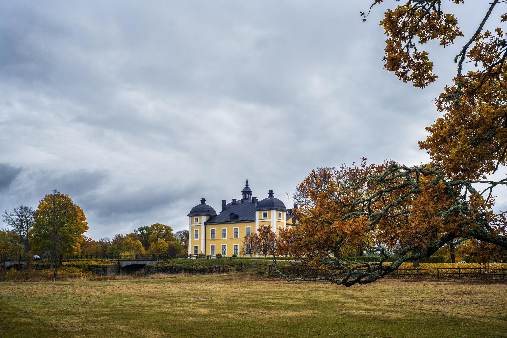strömsholm castle, Sweden by hutchst