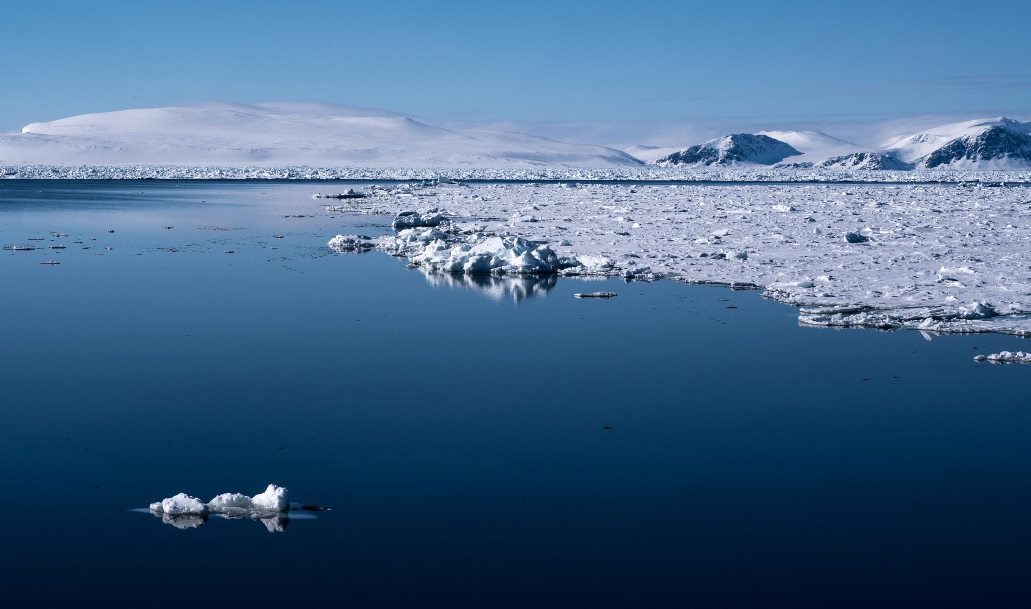 stillness in the pack ice by hutchst