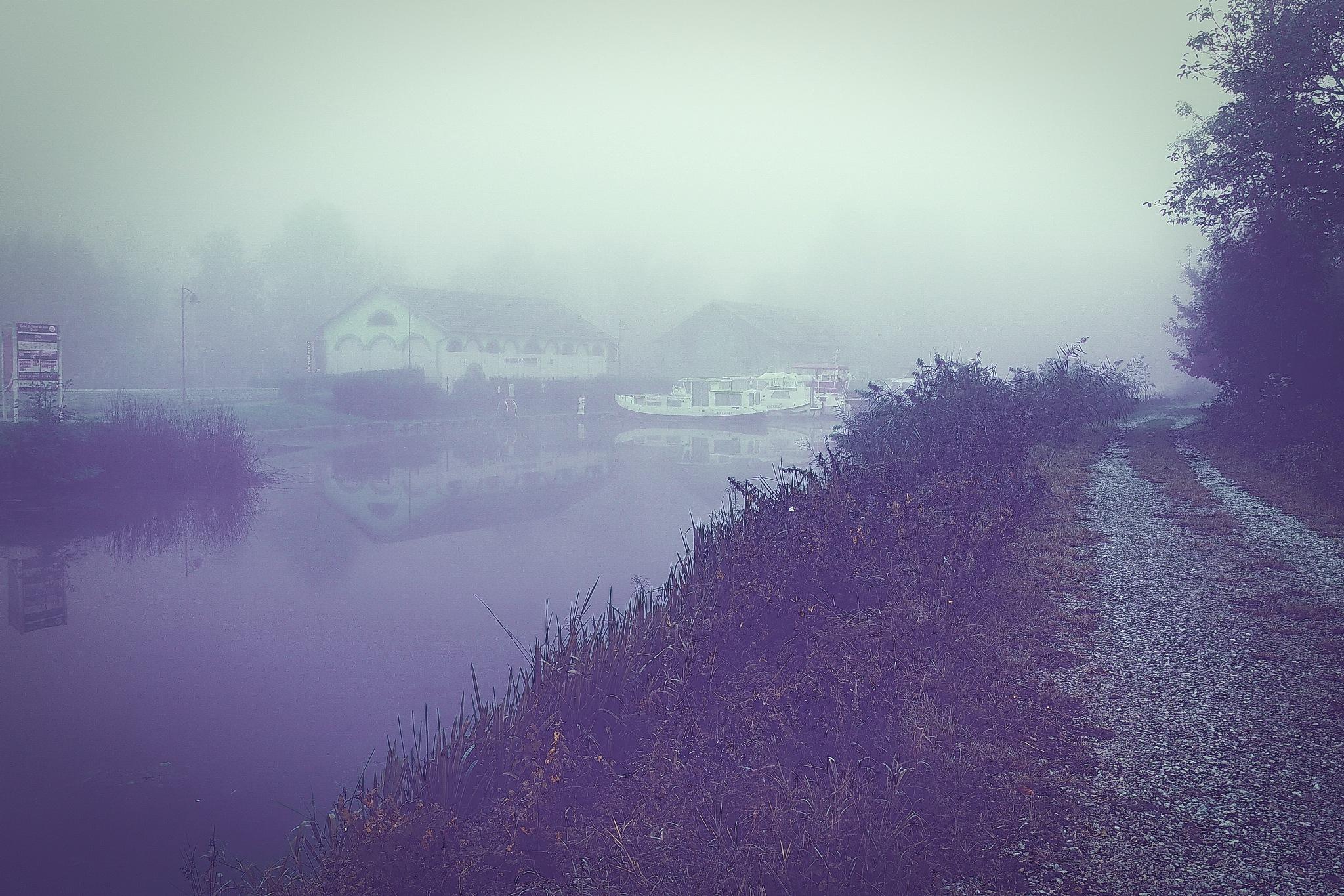 autumn morning mist by alain michel