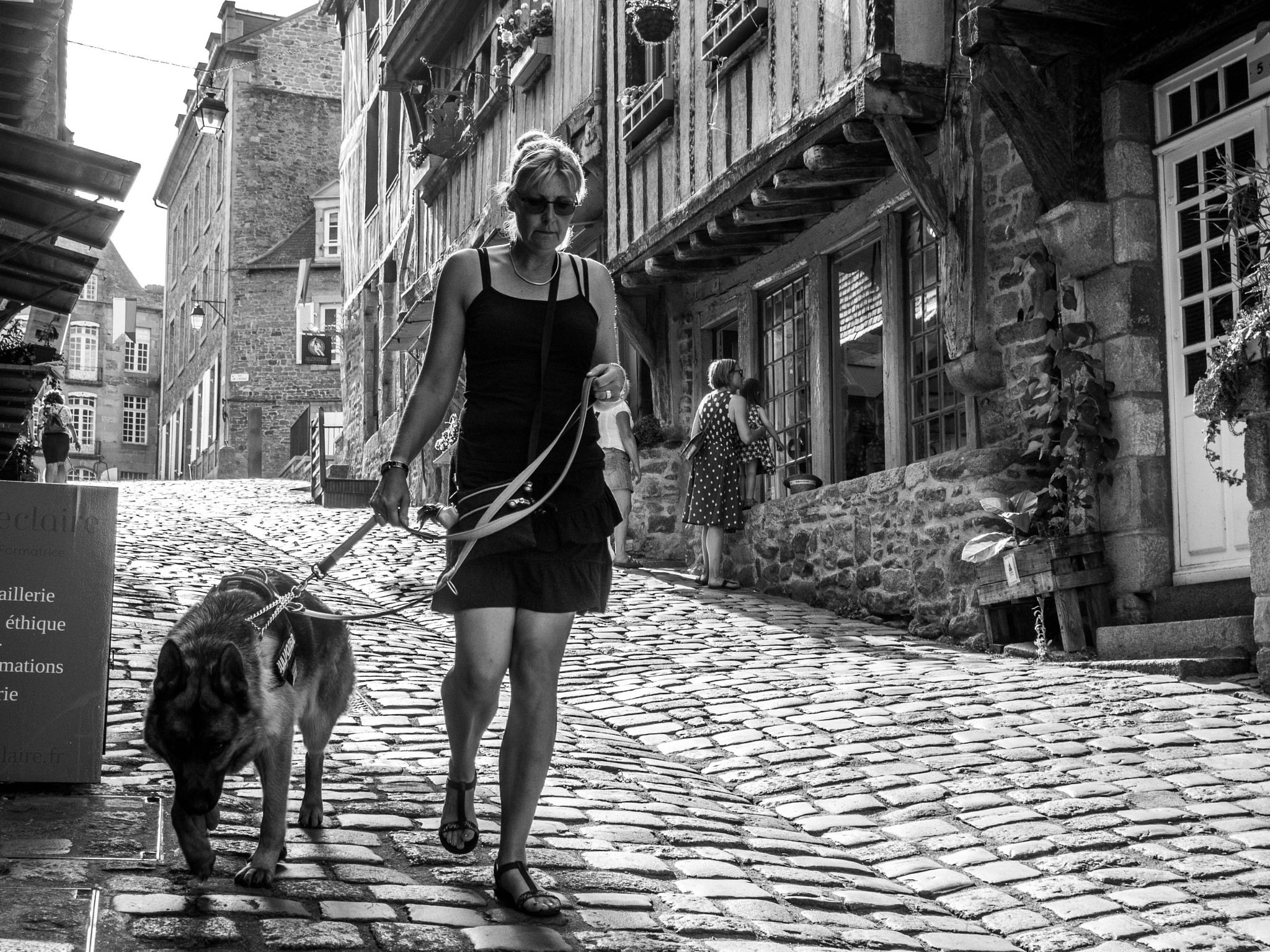 walking the dog  by alain michel