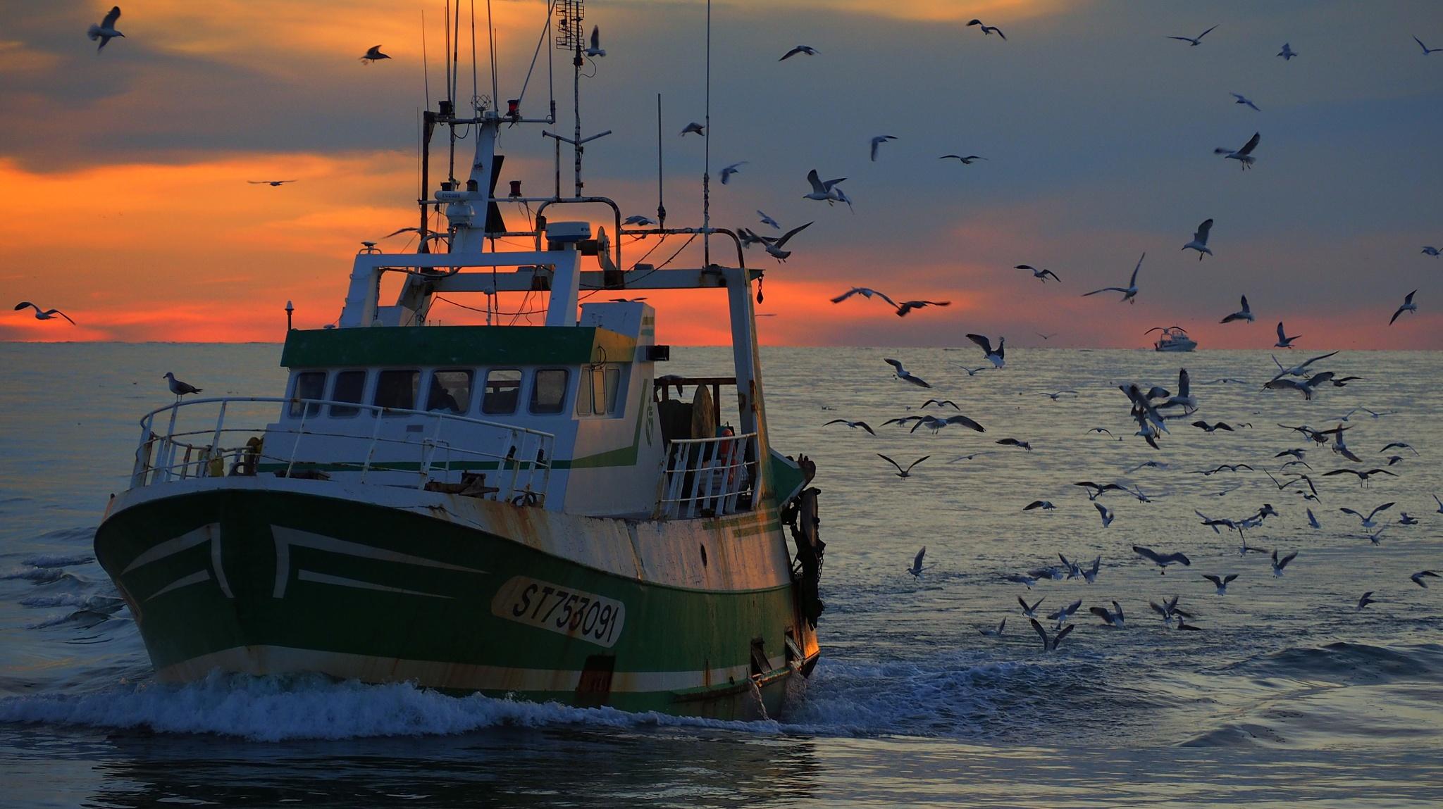 return of trawlers by alain michel
