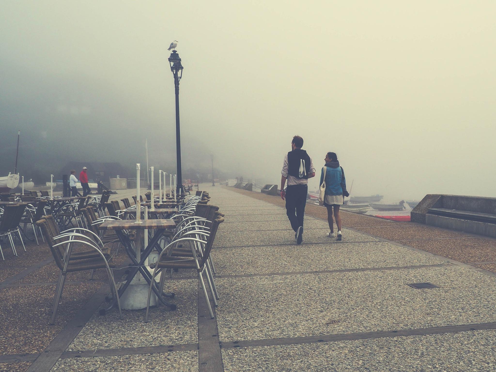 walk in the mist  by alain michel