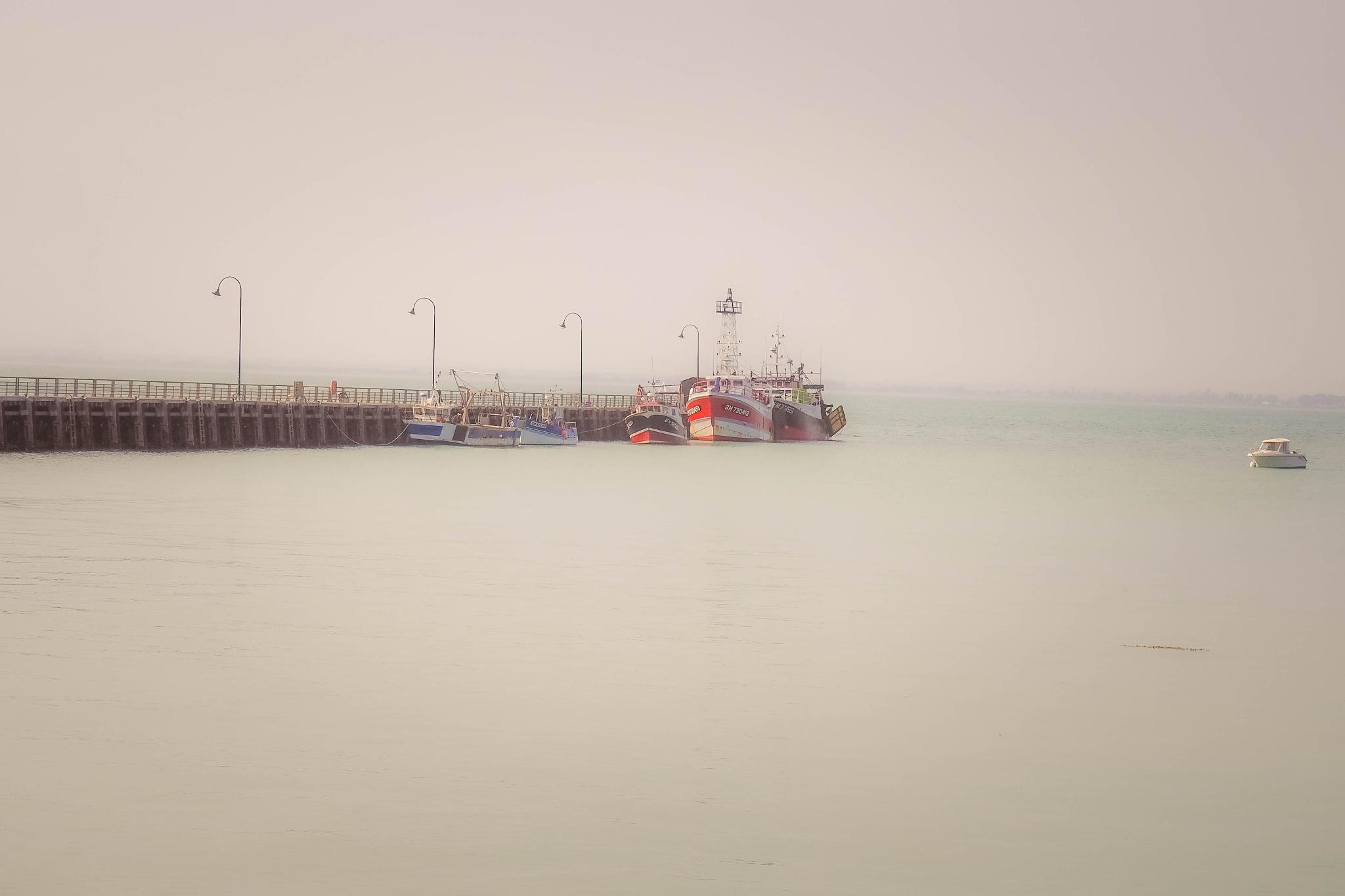 port de Cancale  by alain michel