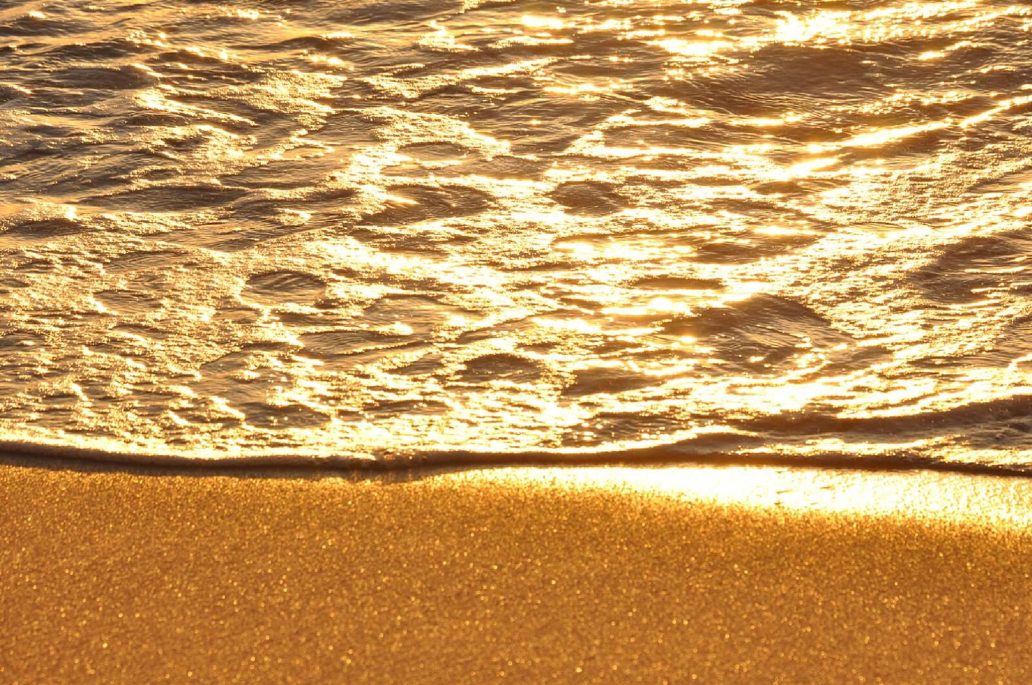 Golden Sands by Joy W. Goldman