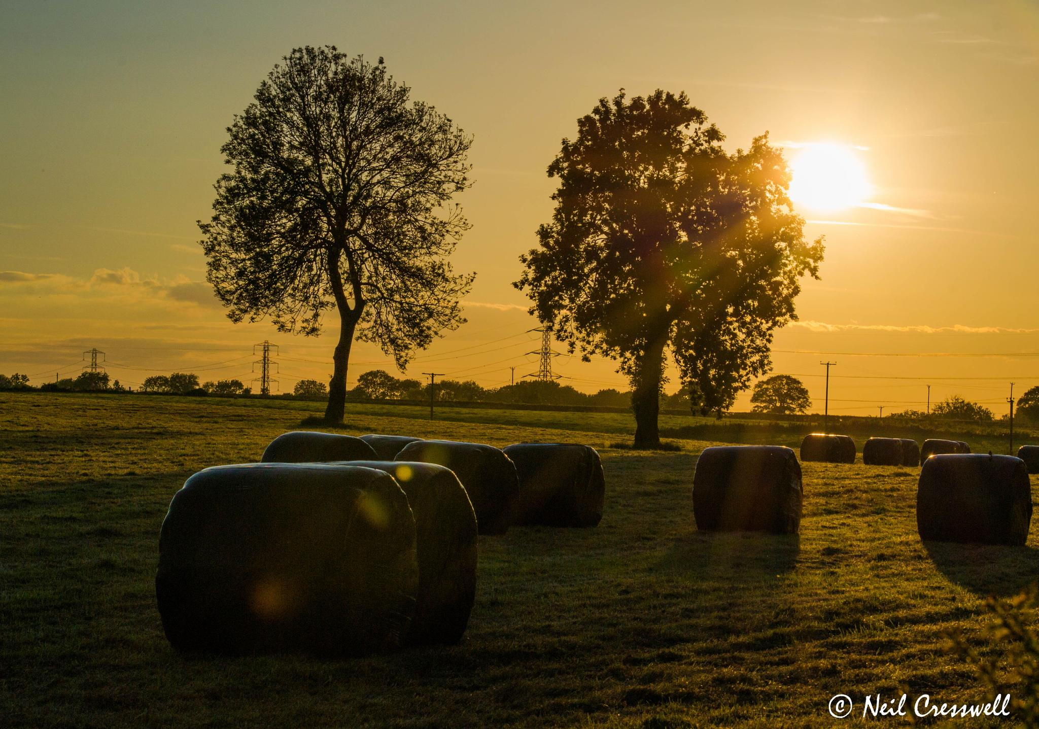 Sun setting across the fields by Neil Cresswell