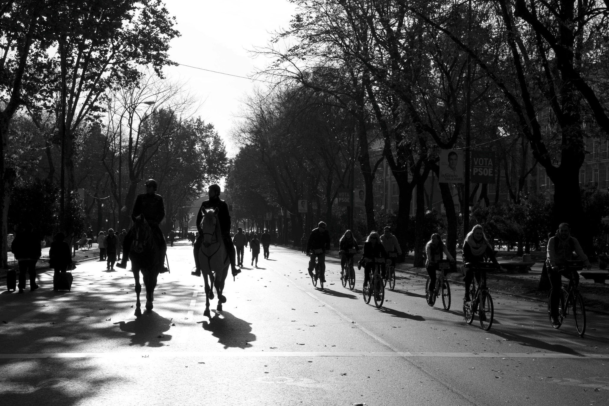 Bikes and horses by juliandelnogal
