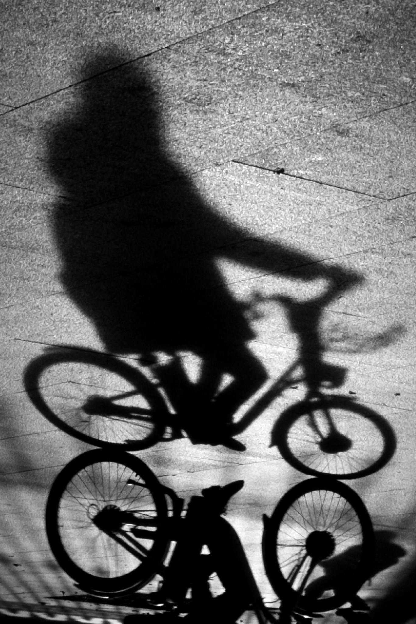 The cyclist (2) by juliandelnogal