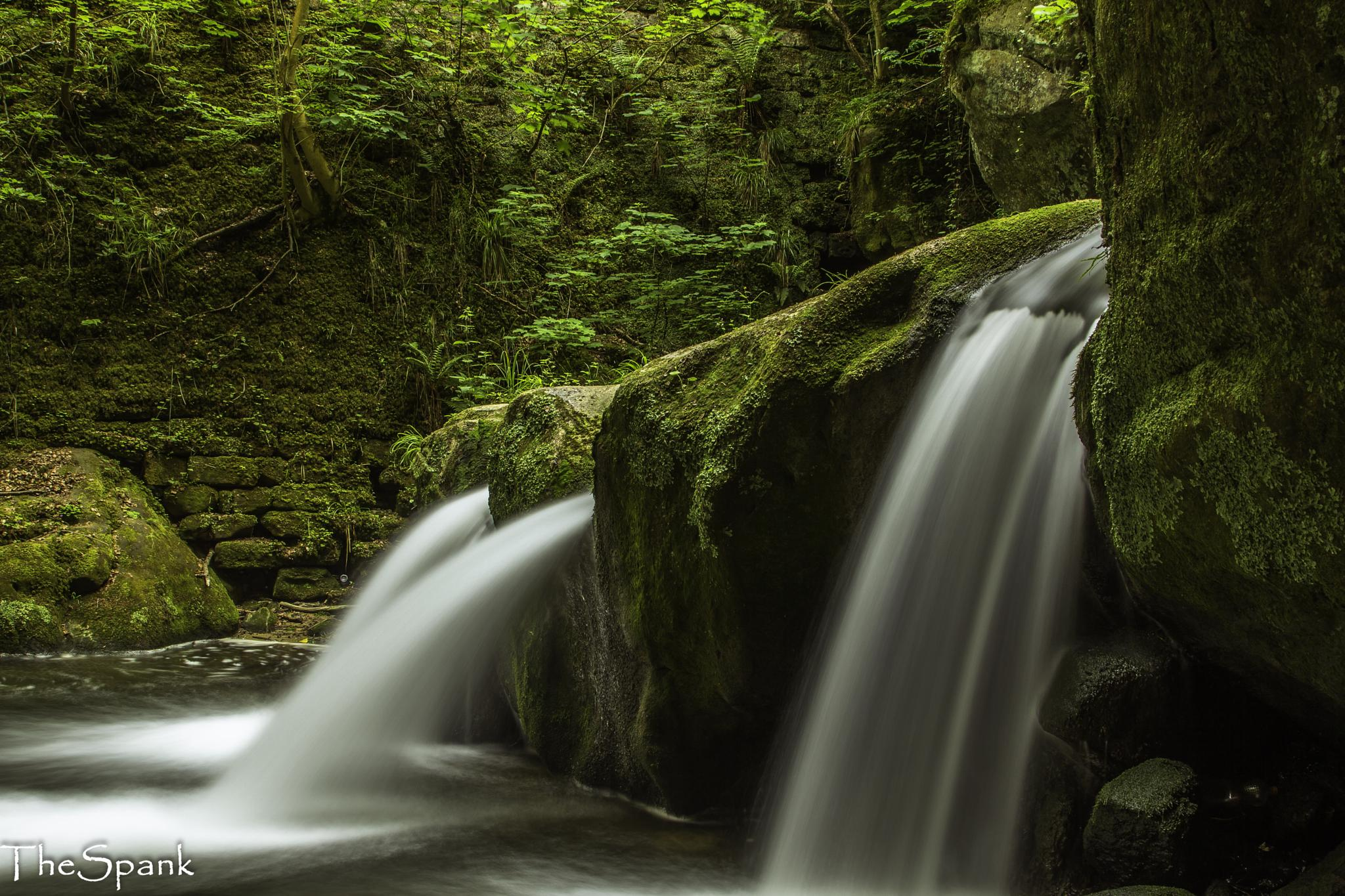 Mullerthal 2 by Henk