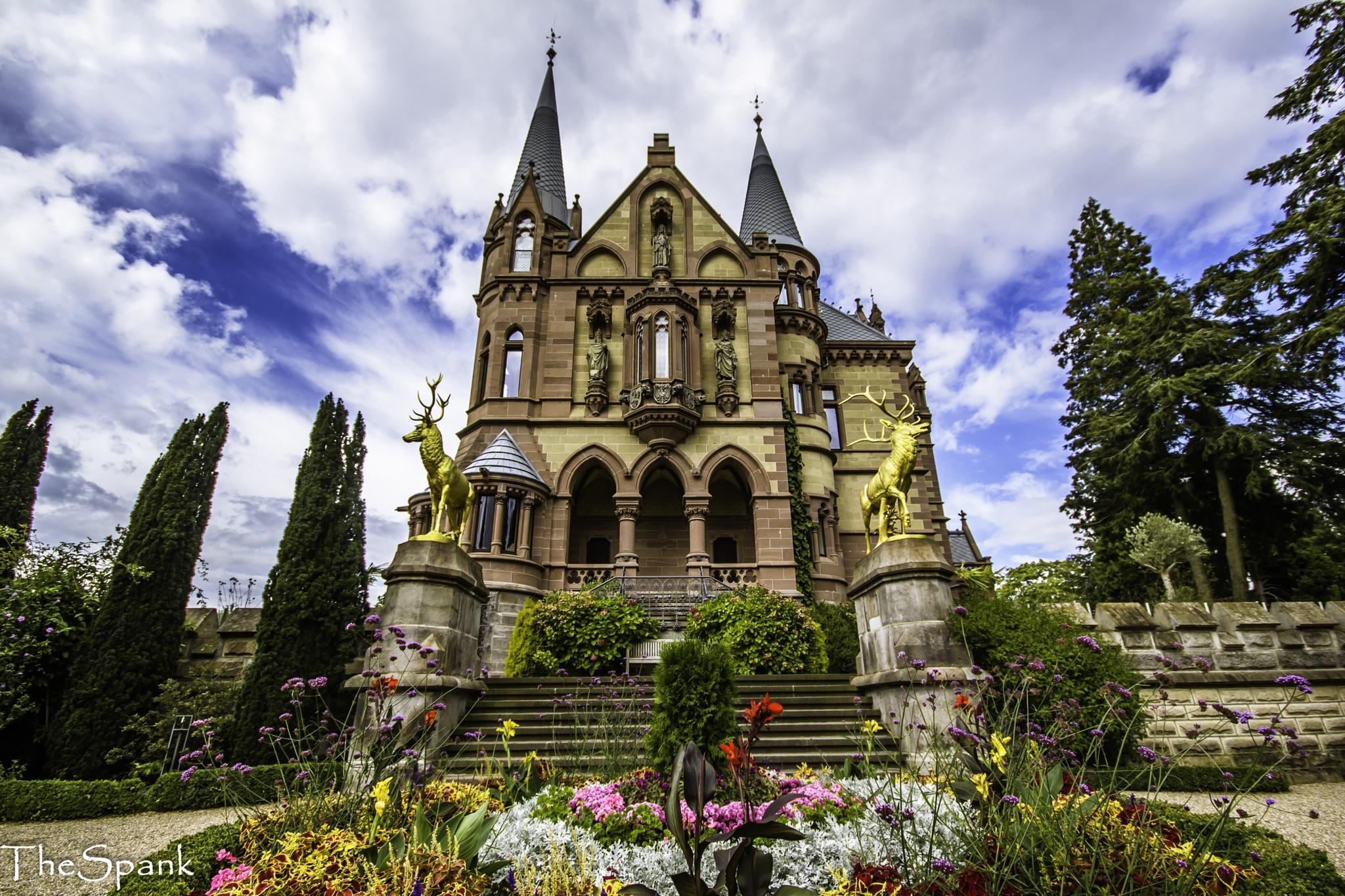 Dragenburg castle by Henk