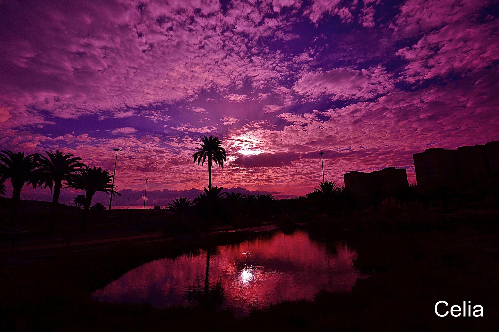 Espectacular amanecer by celiafernandez752