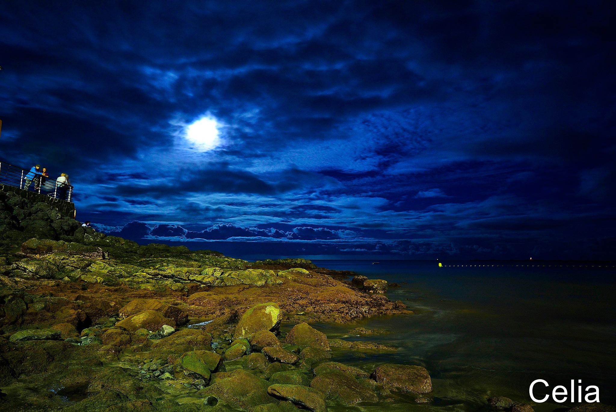 Noche en azul  by celiafernandez752