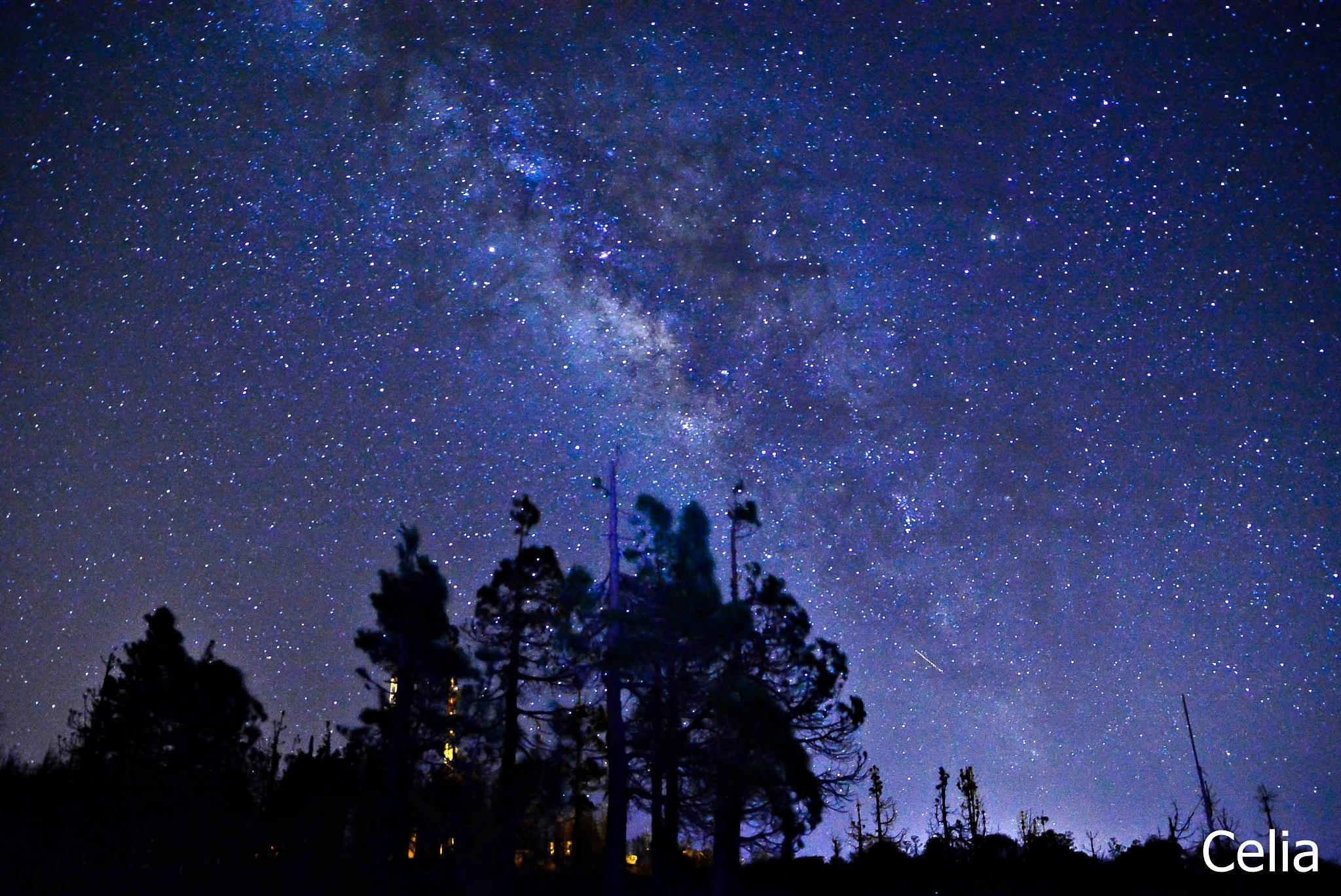 Noche de Vía Láctea - Canarias  by celiafernandez752