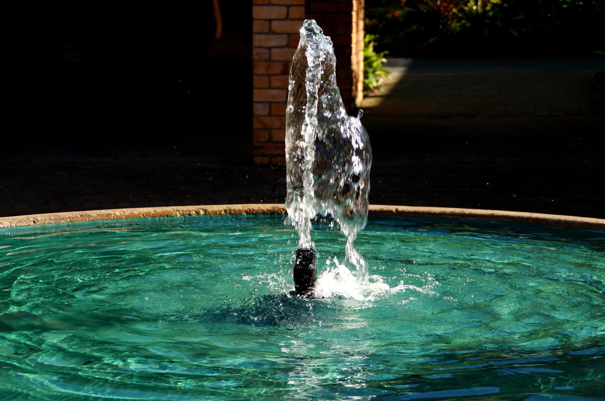 Water by FlorinaBird