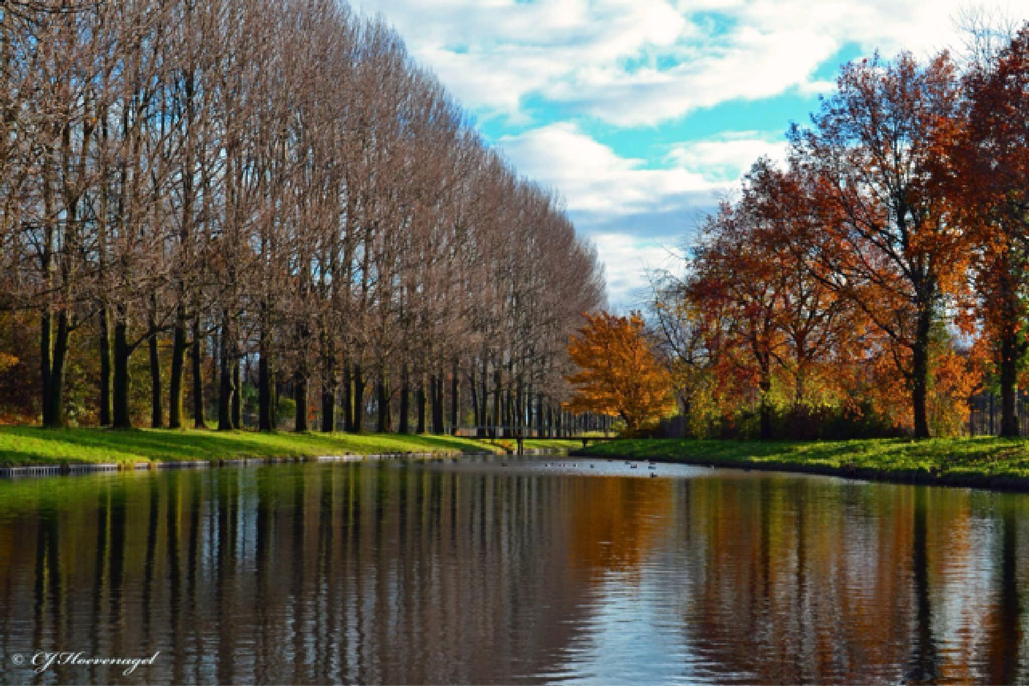 Autumn by Cassy Hoevenagel
