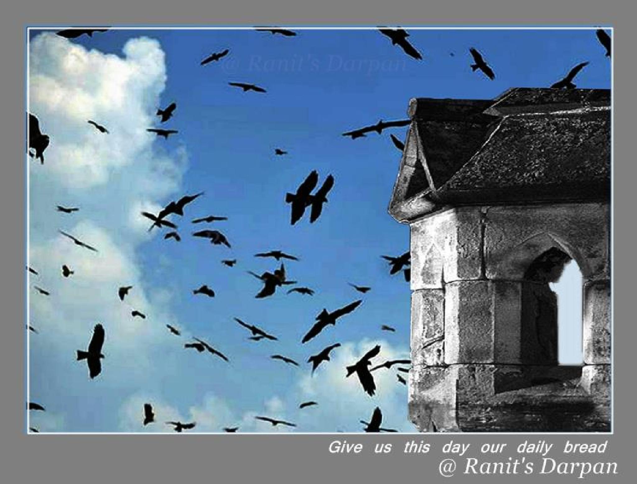 Untitled by Ranit Ganguly