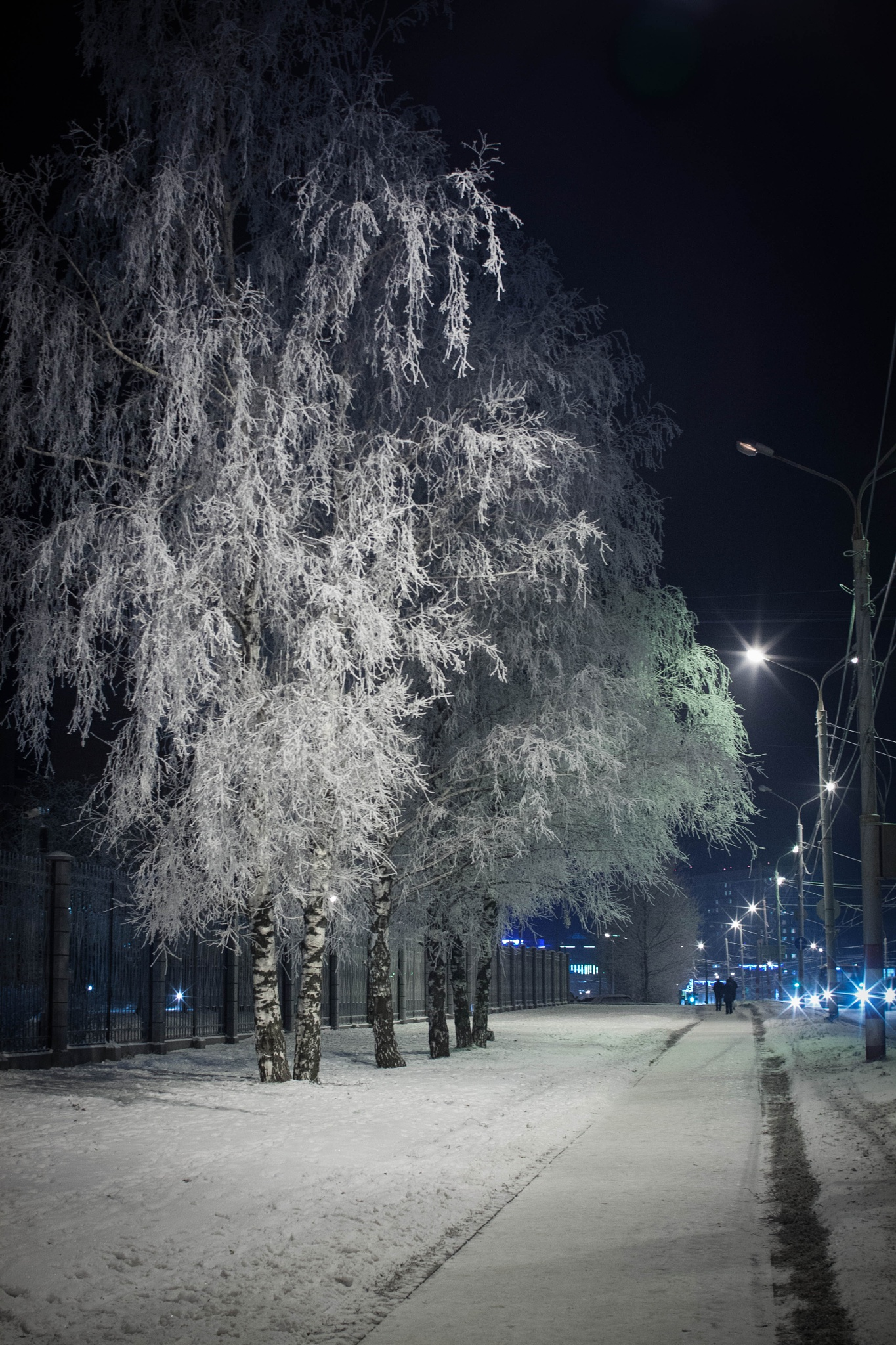 Frost by Vladimir