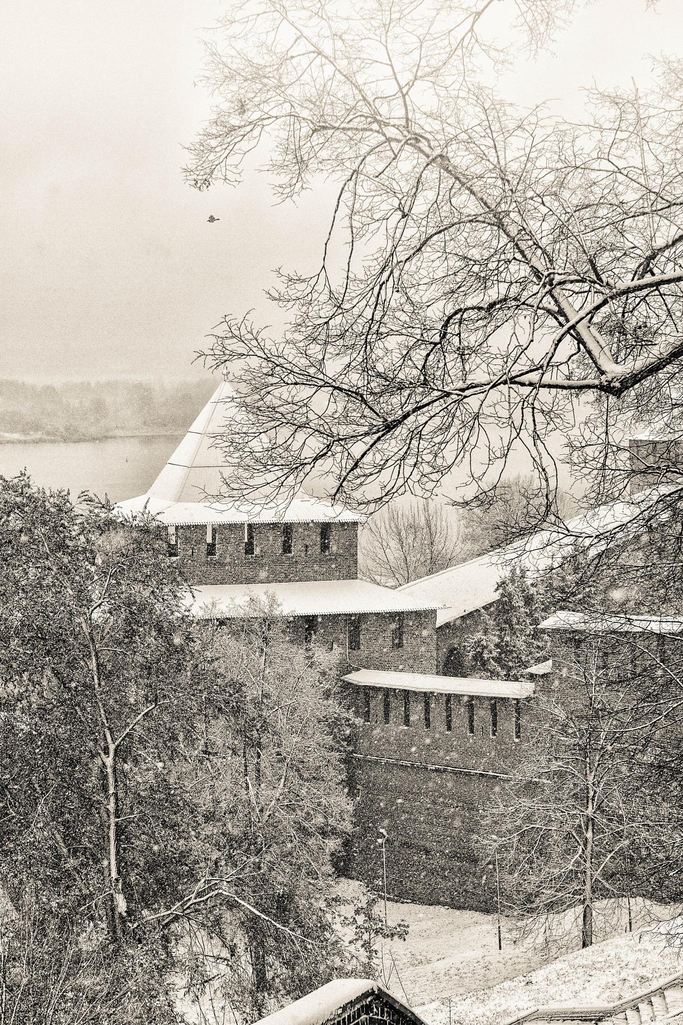 Первый снег (Ч/Б) by Vladimir