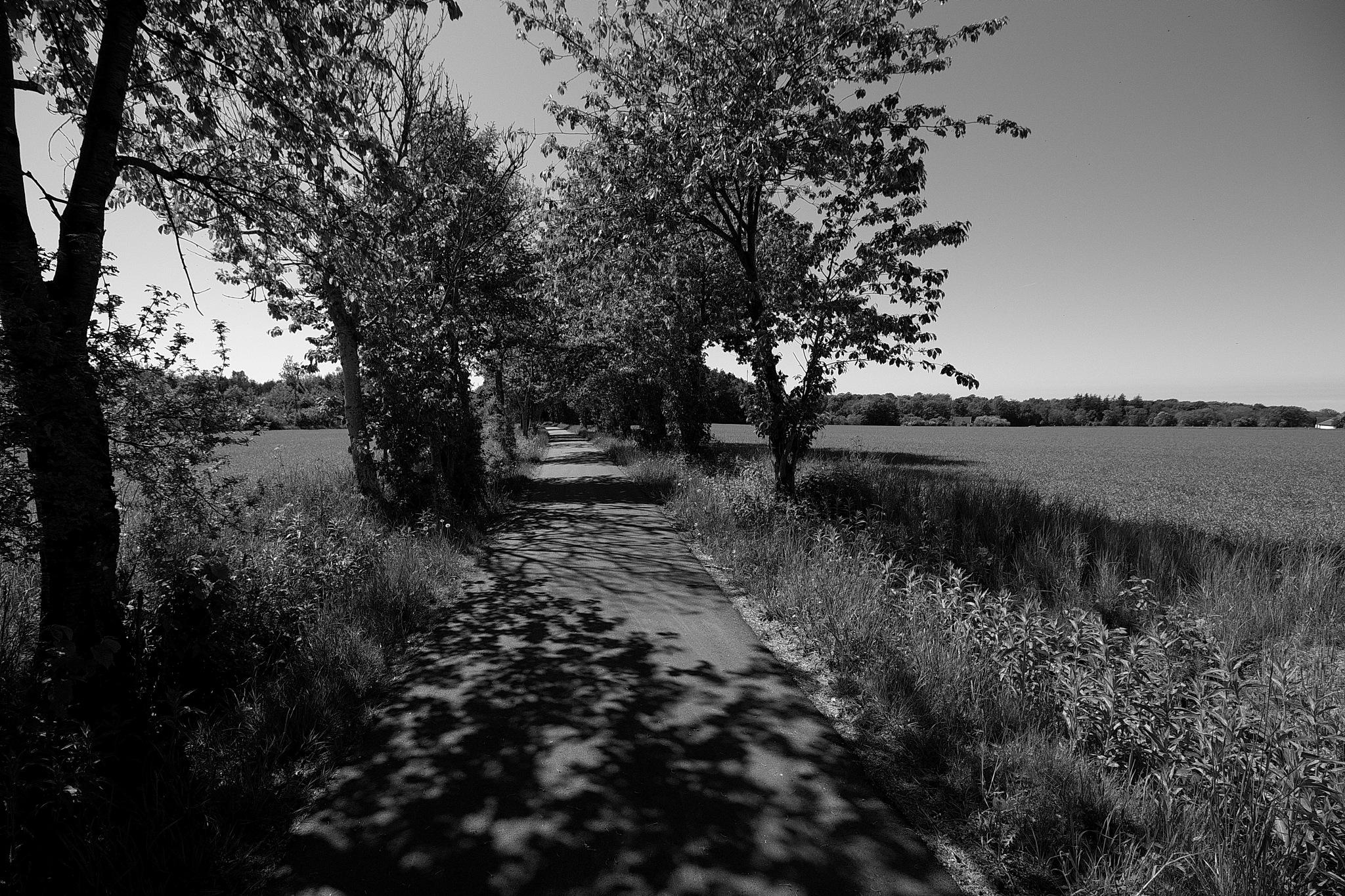 Nyker 7 by Mogens