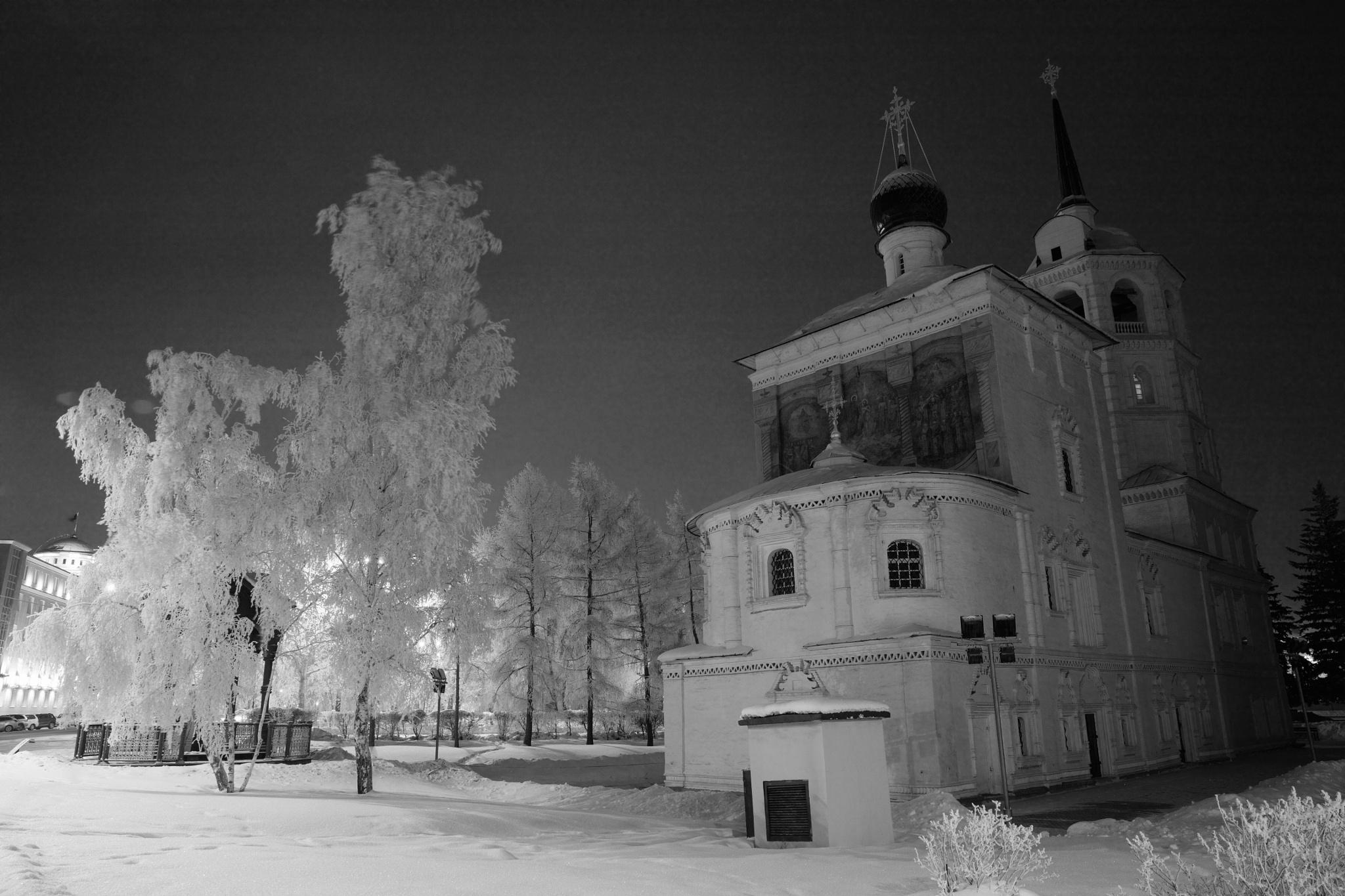 Snow night by Boris Konovalov