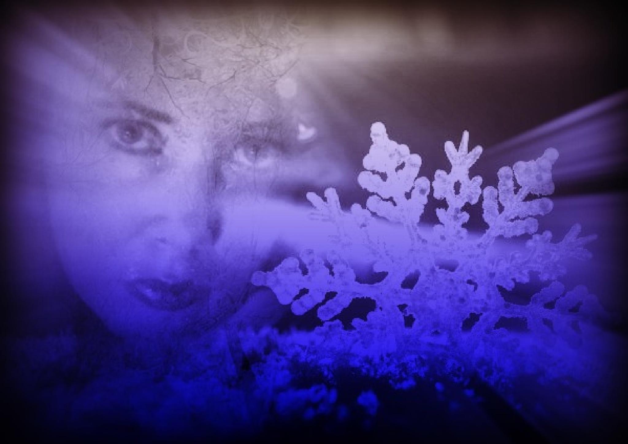 Fallen SnowFlake by Jen Sulser