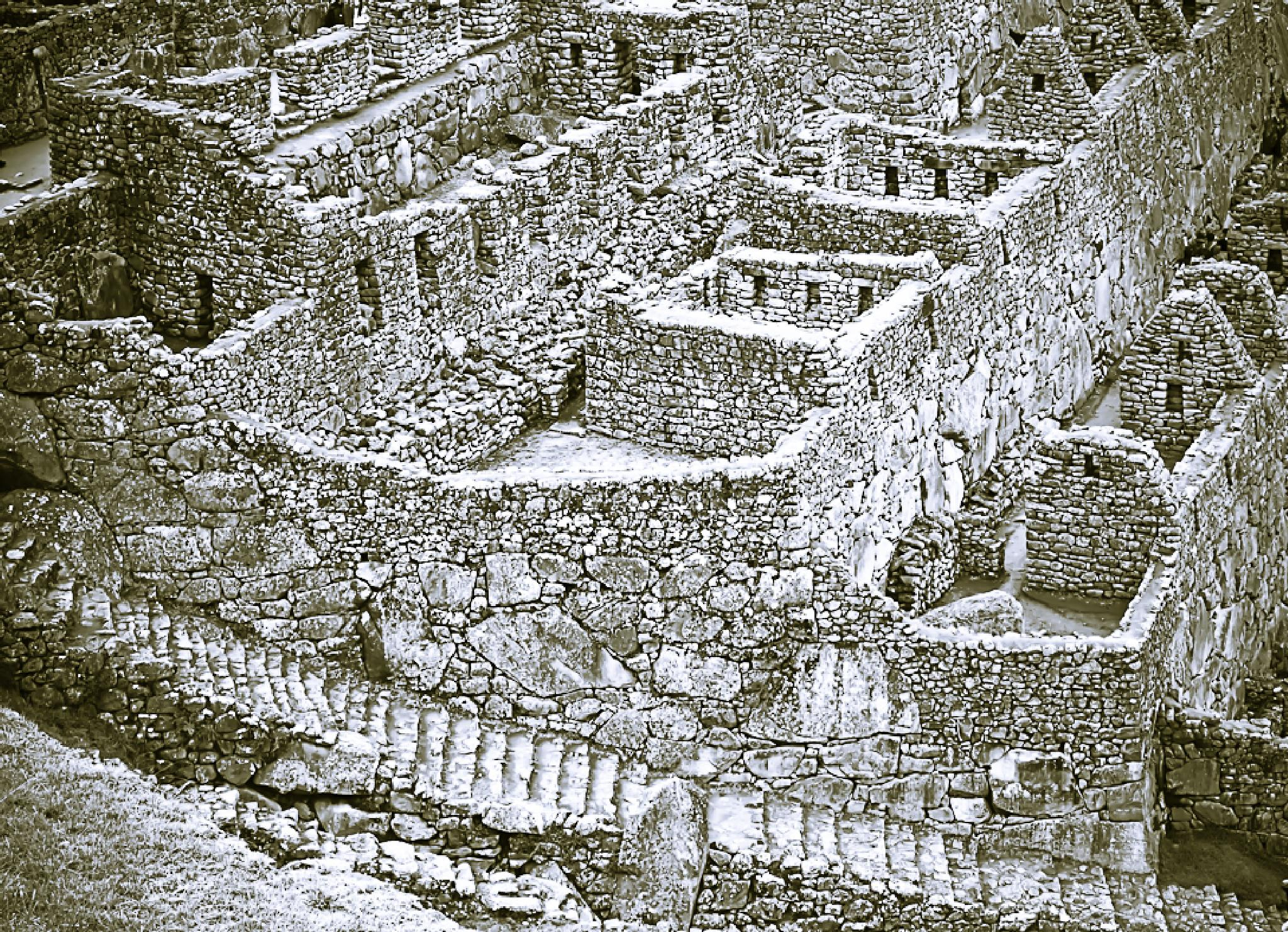 Macchu Pichu  by davidperea