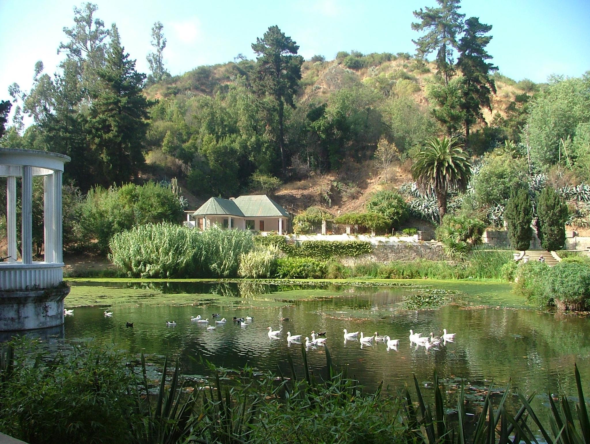 Parque Botanico Vina del Mar Chile by Tor Johansen