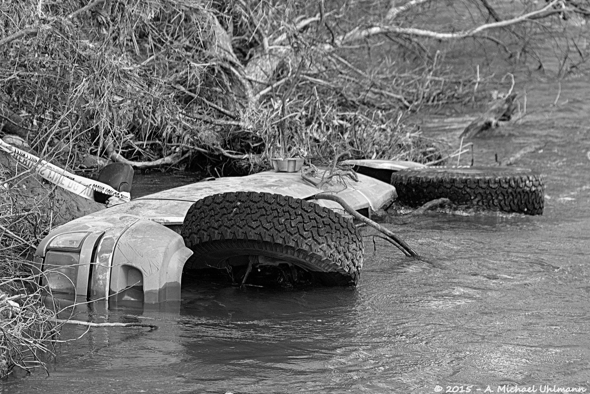 Texas Flood 1 by A. Michael Uhlmann