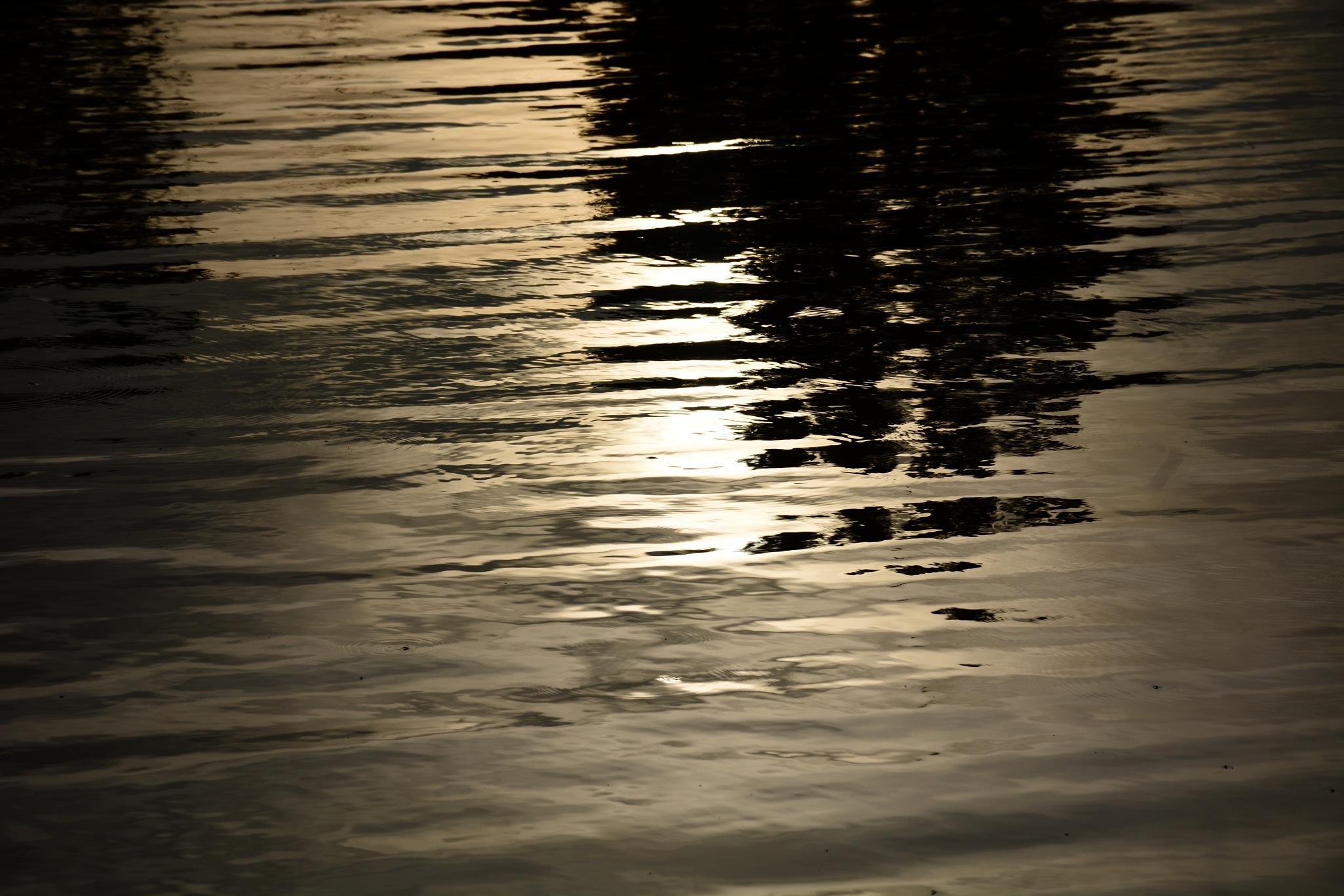 Shadows in the Water by roughneck1-9