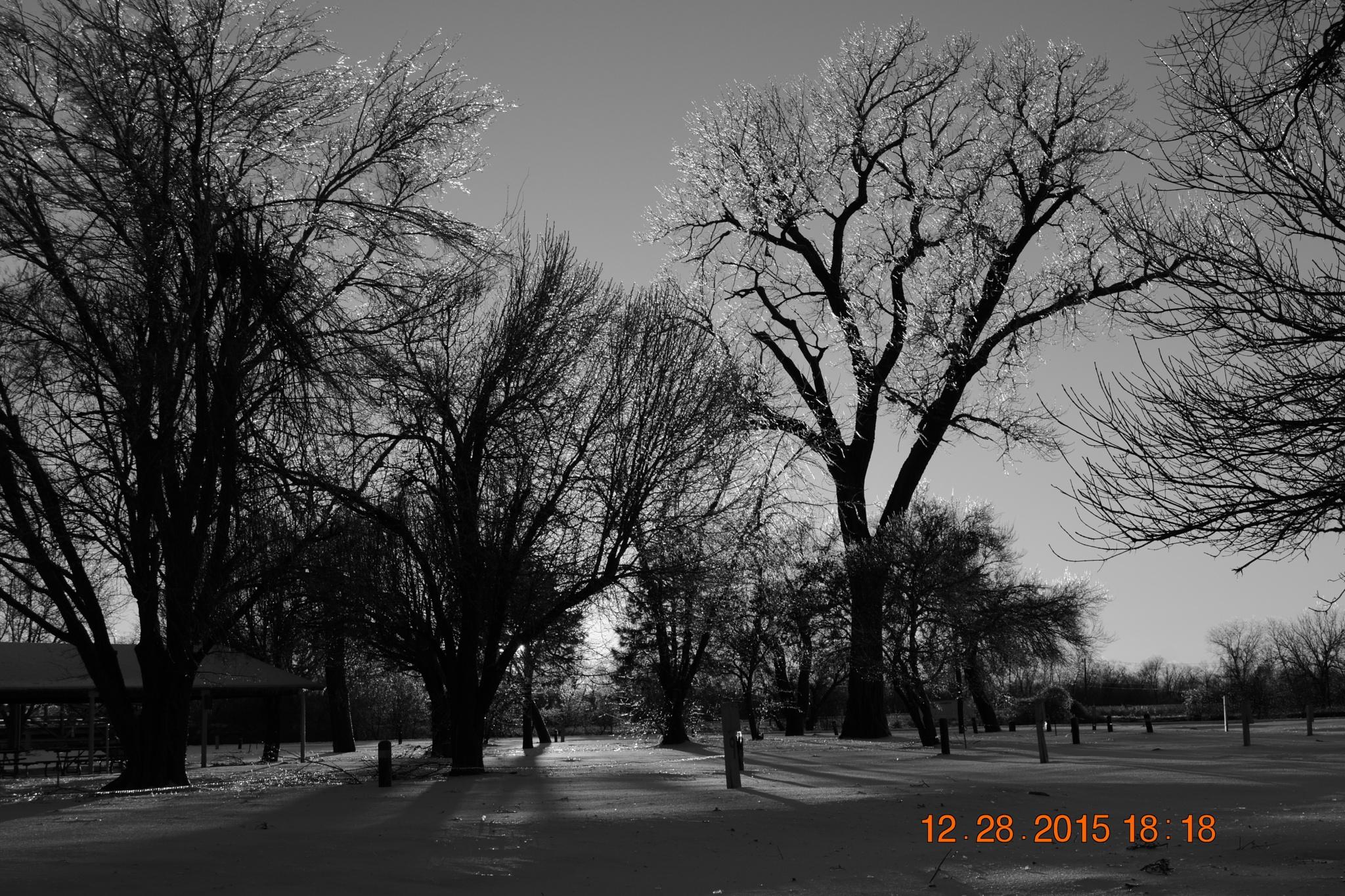 randlet park oklahoma by roughneck1-9