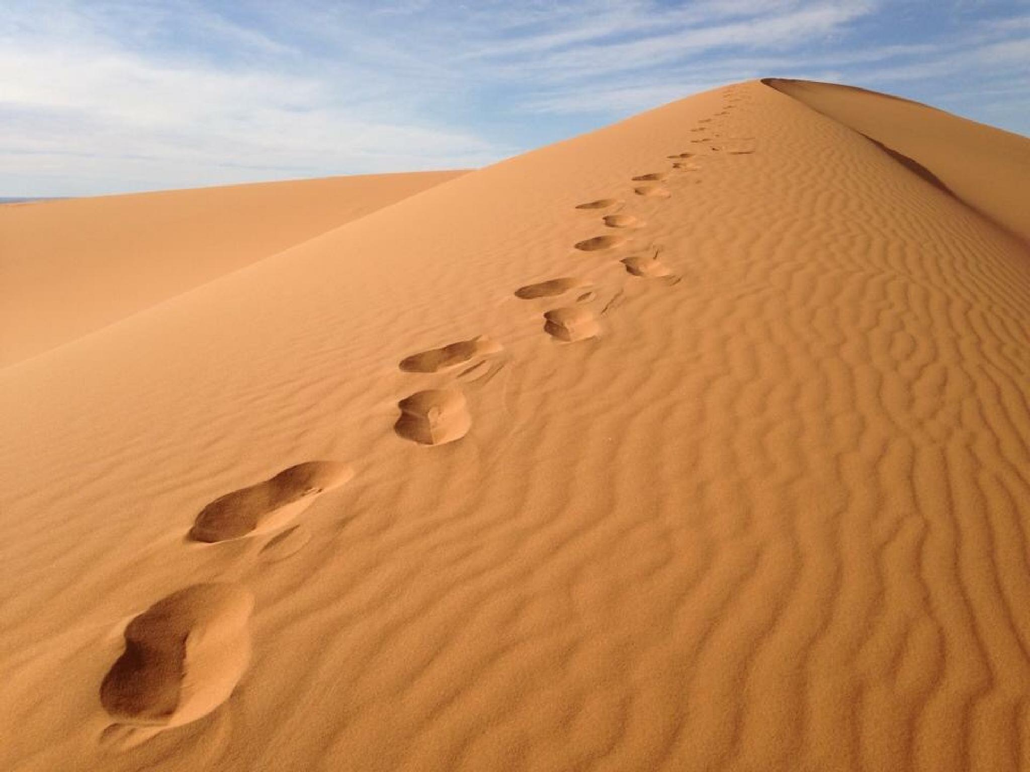 Steps by philip.han