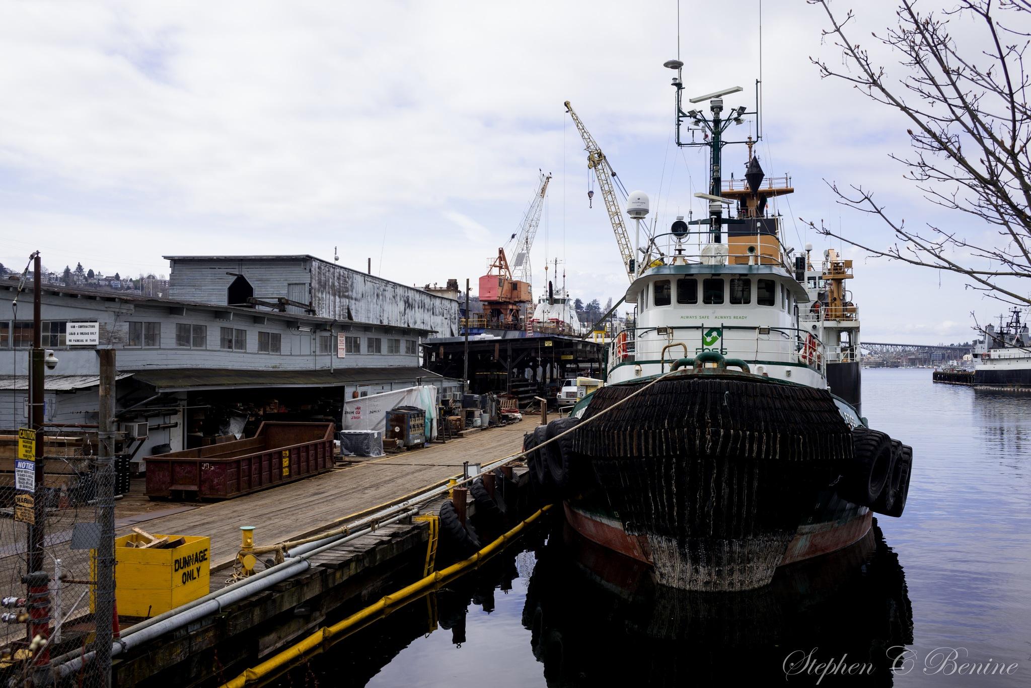 Working Dock by Stephen C. Benine