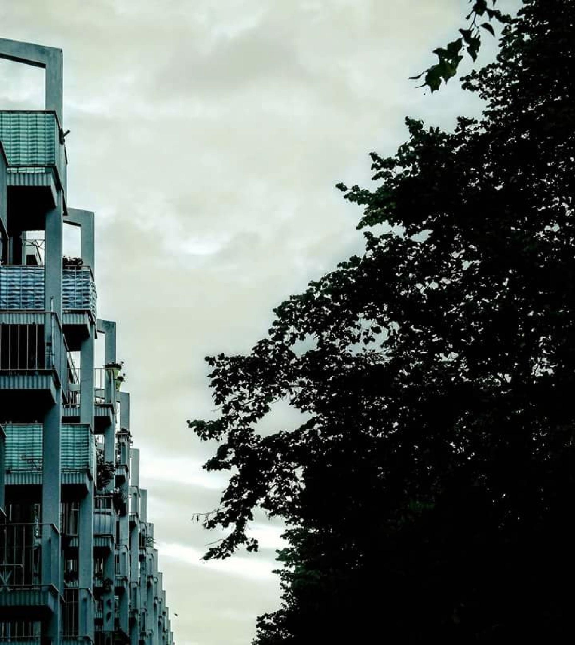 Neighbours... by Claudia Schneider