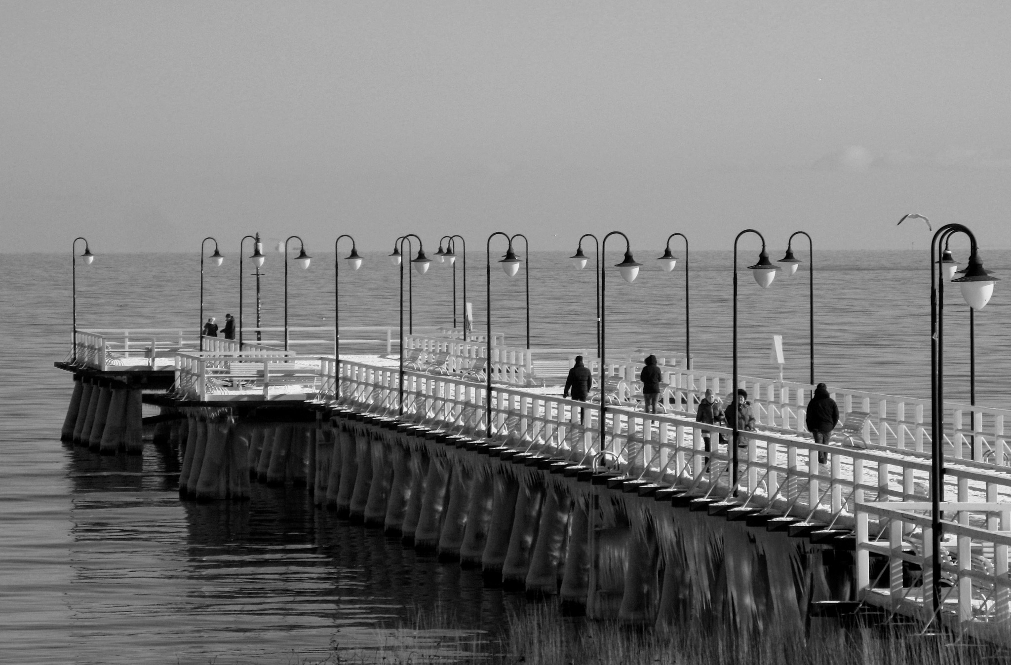 A walk in black and white by Ela Gajowska
