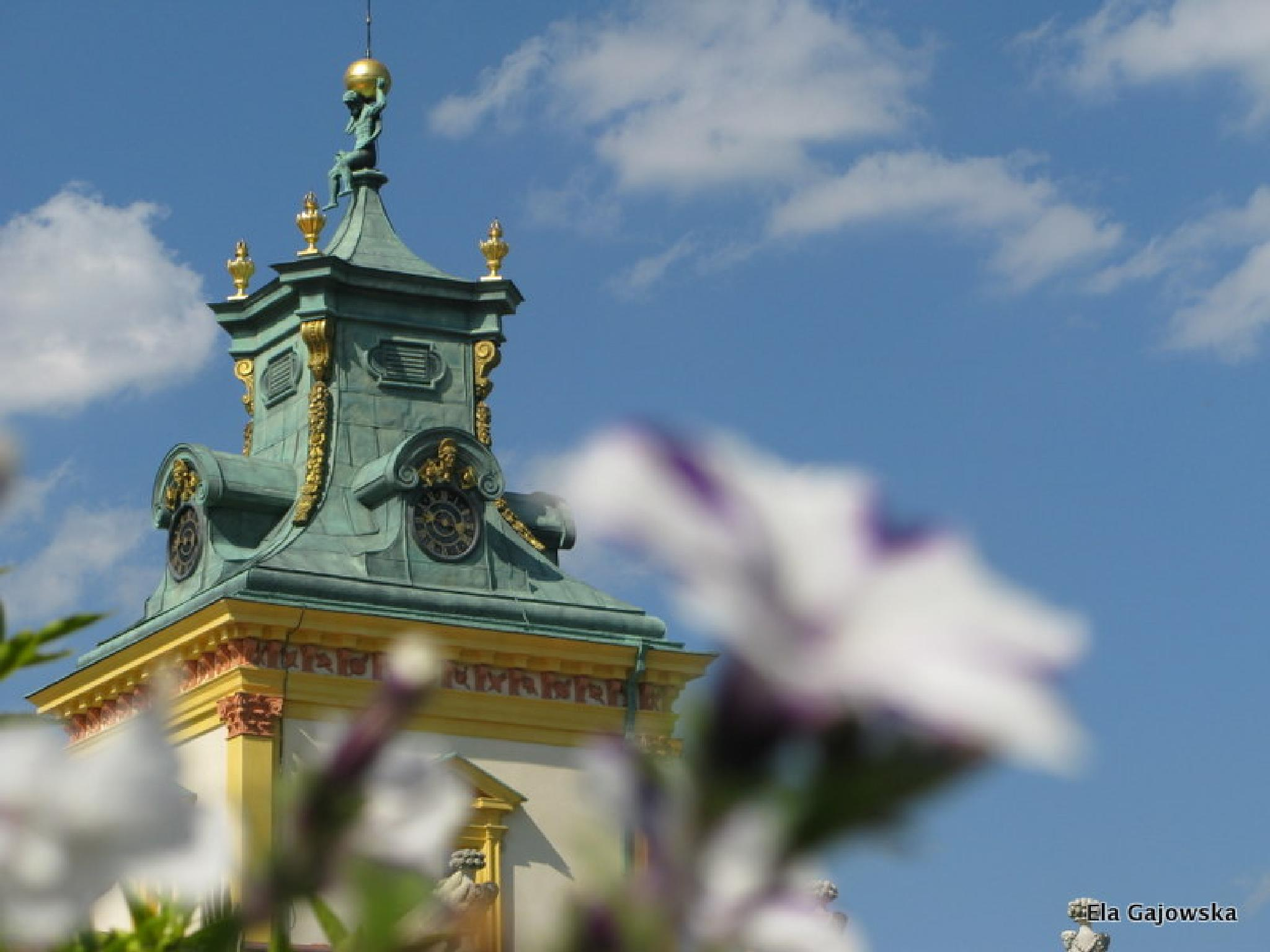 Photo in Cityscape #sky #palace #roof #wilanow #surfinia