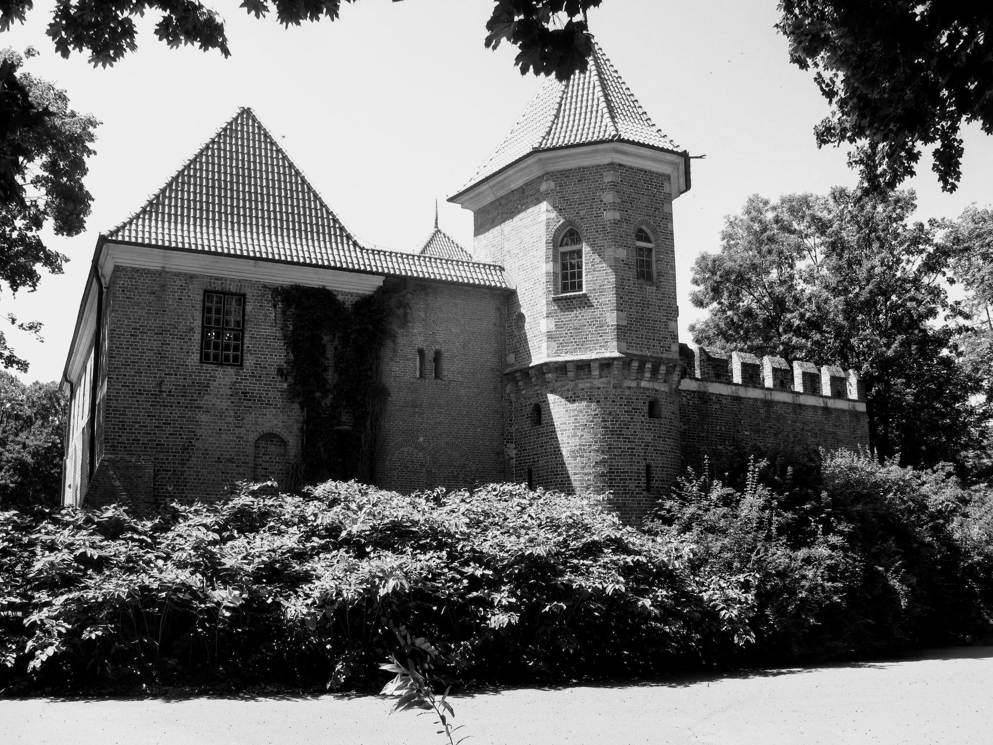 Oporów Castle by Ela Gajowska
