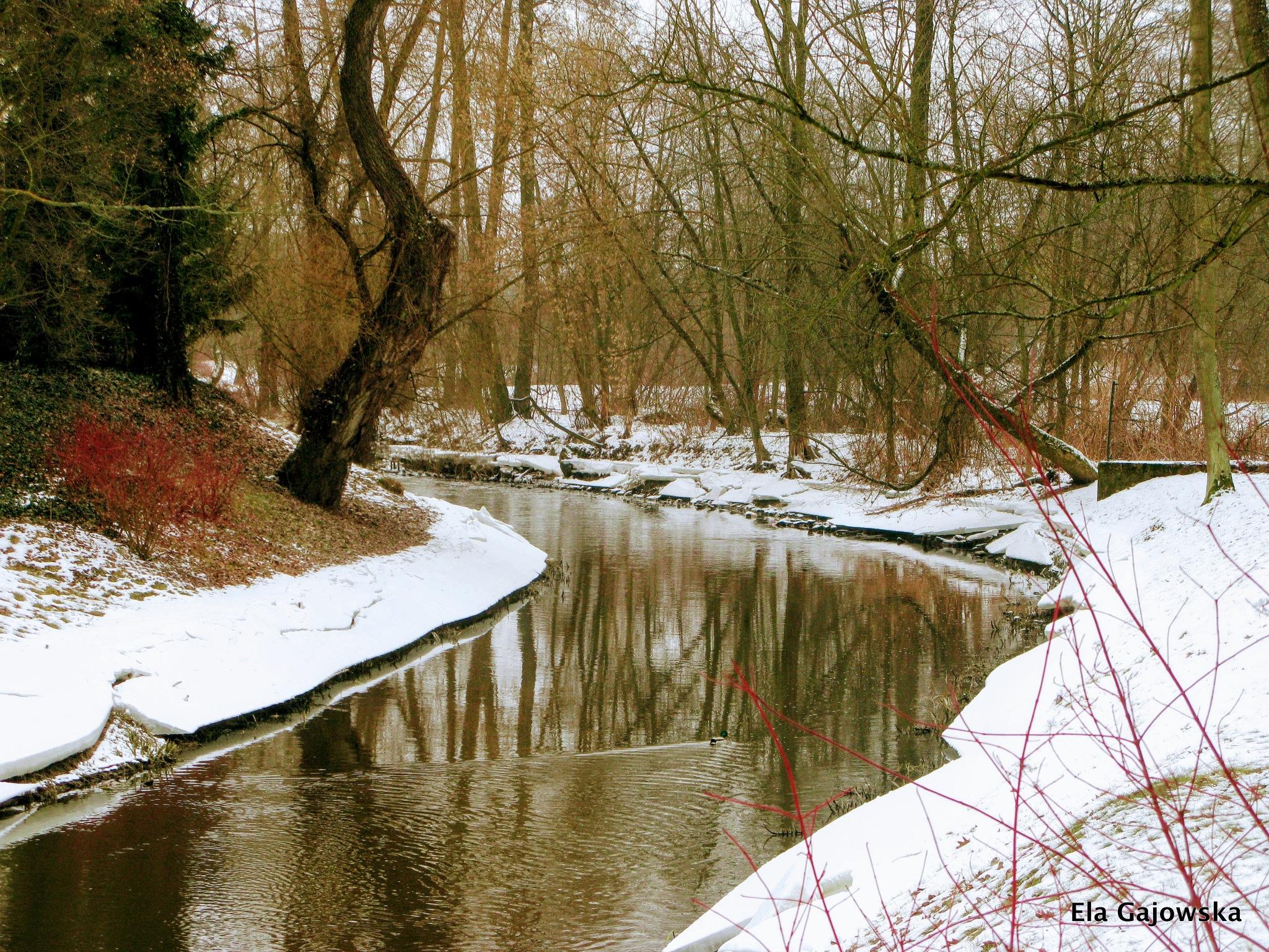 February day by Ela Gajowska