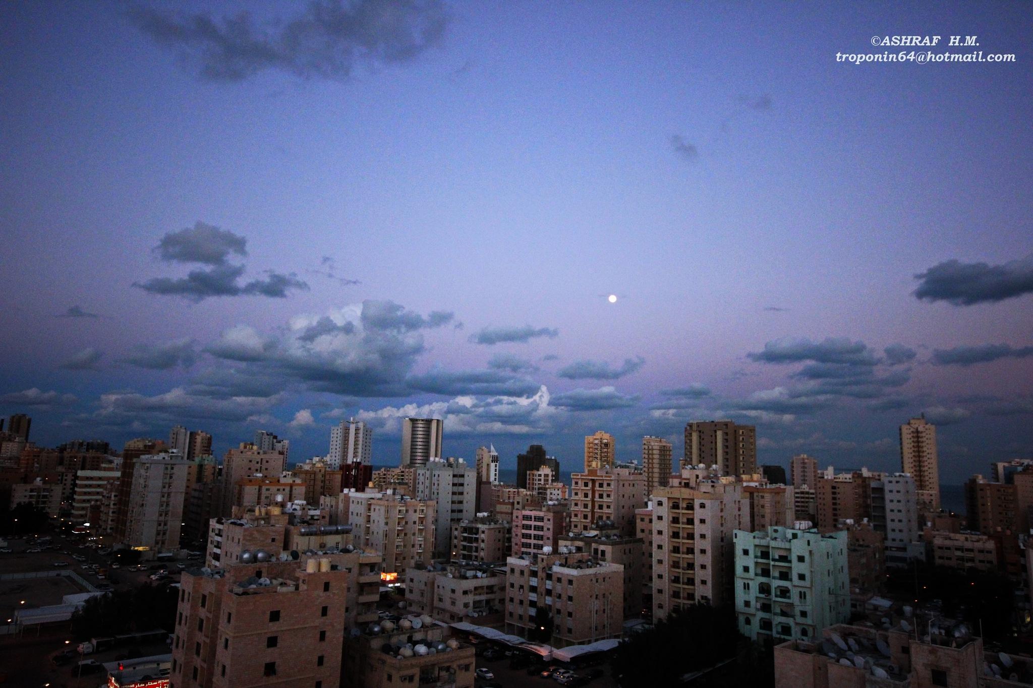 Untitled by Ashraf Hassanein