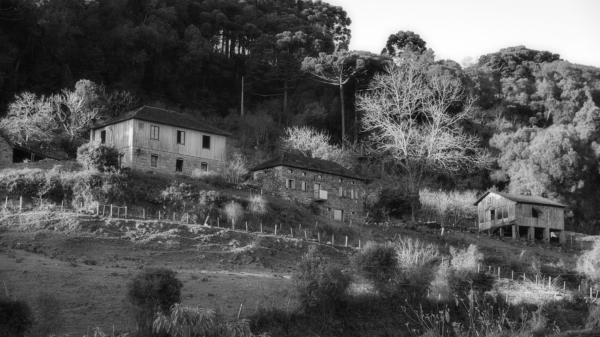 Caminhos de Pedra - Casarões by WSimone