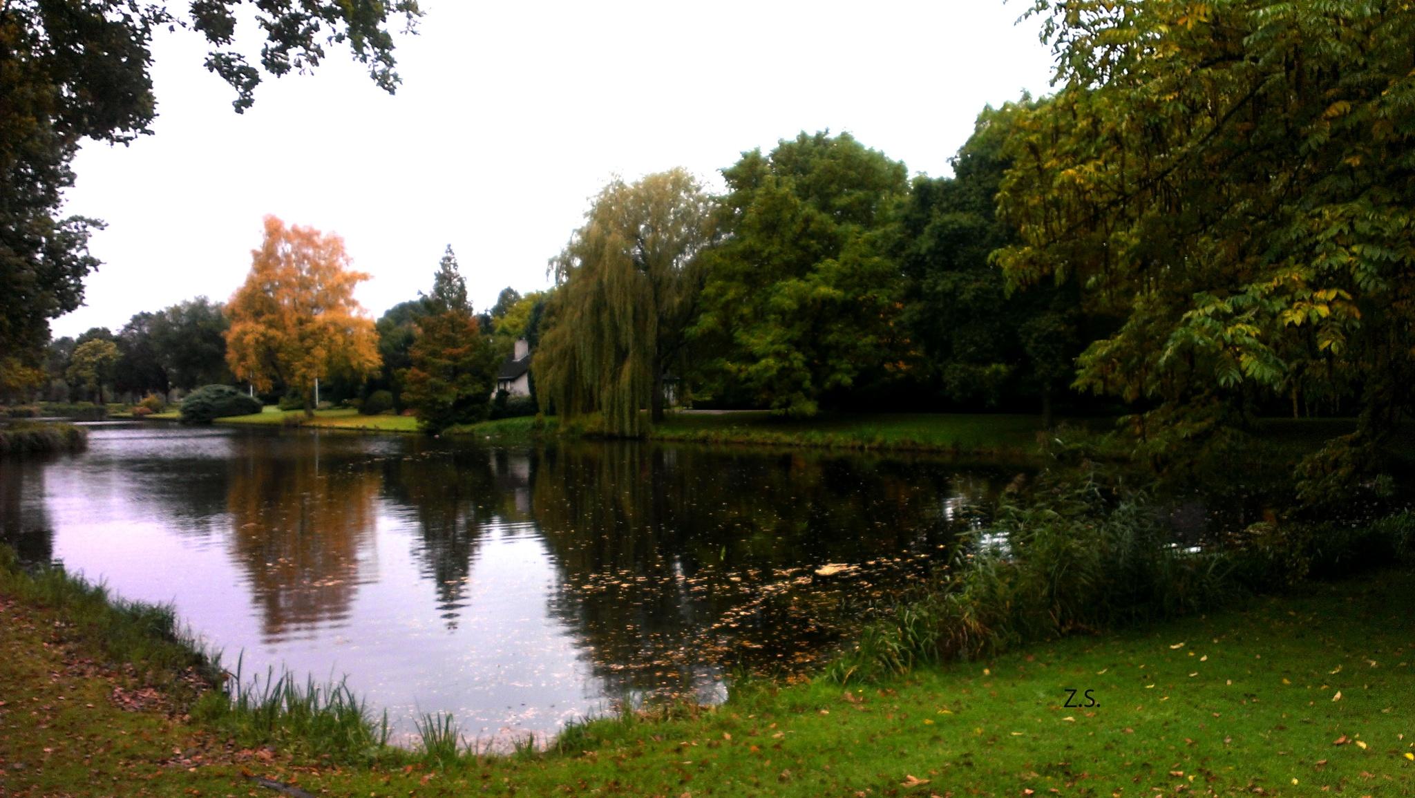 Autumn days! by z.setoodeh