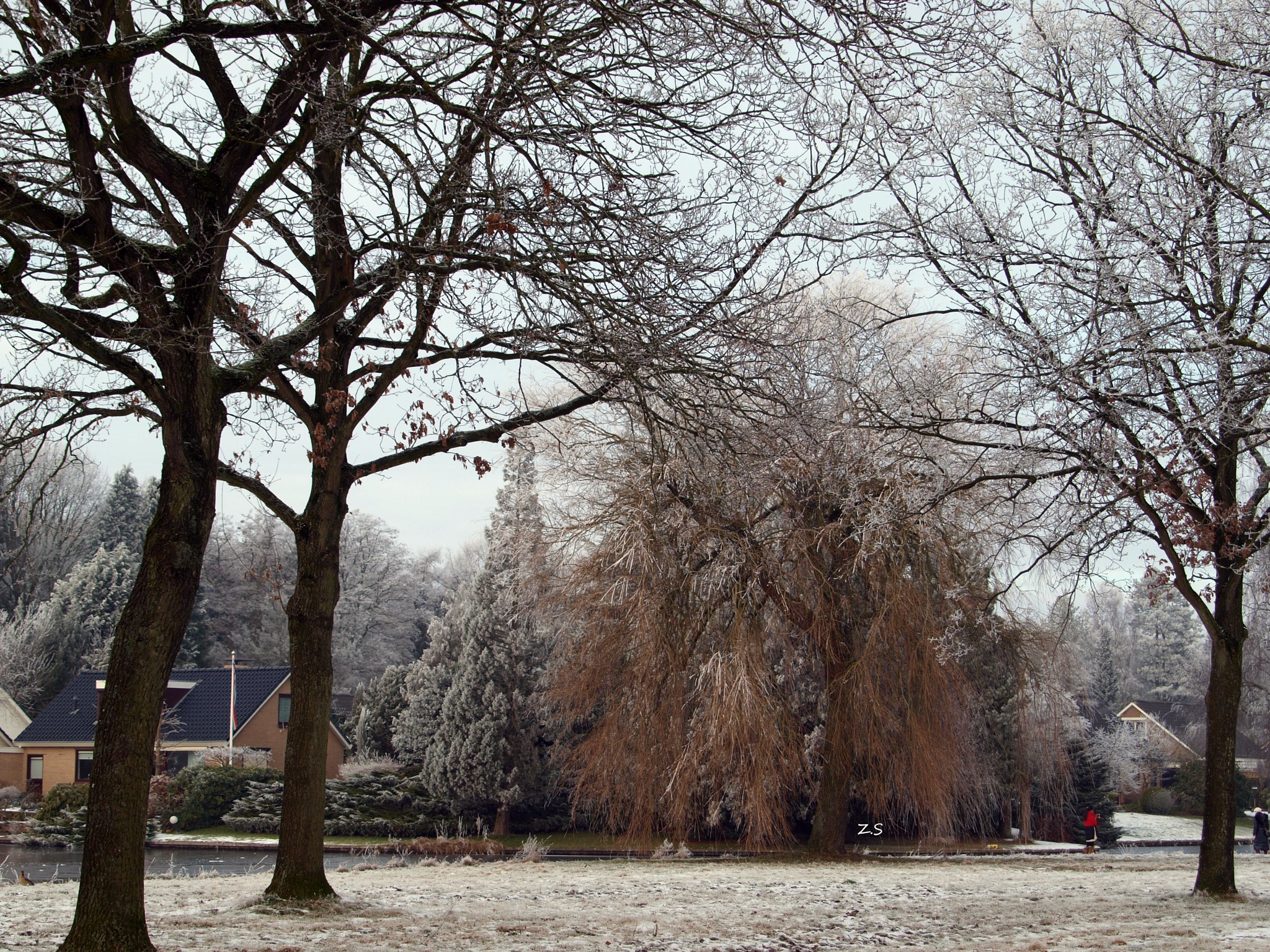 Winter Wonderland! by z.setoodeh